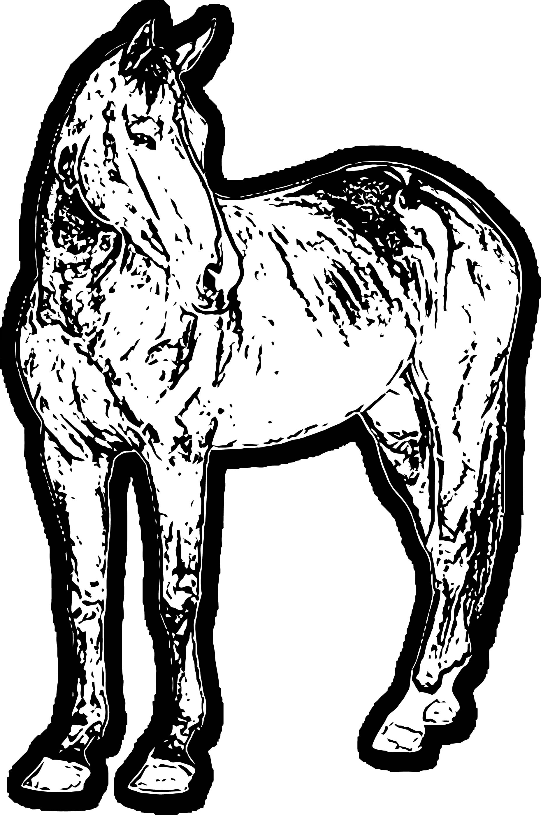 Horse Coloring Page Wecoloringpage 149