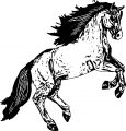 Horse Coloring Page Wecoloringpage 151