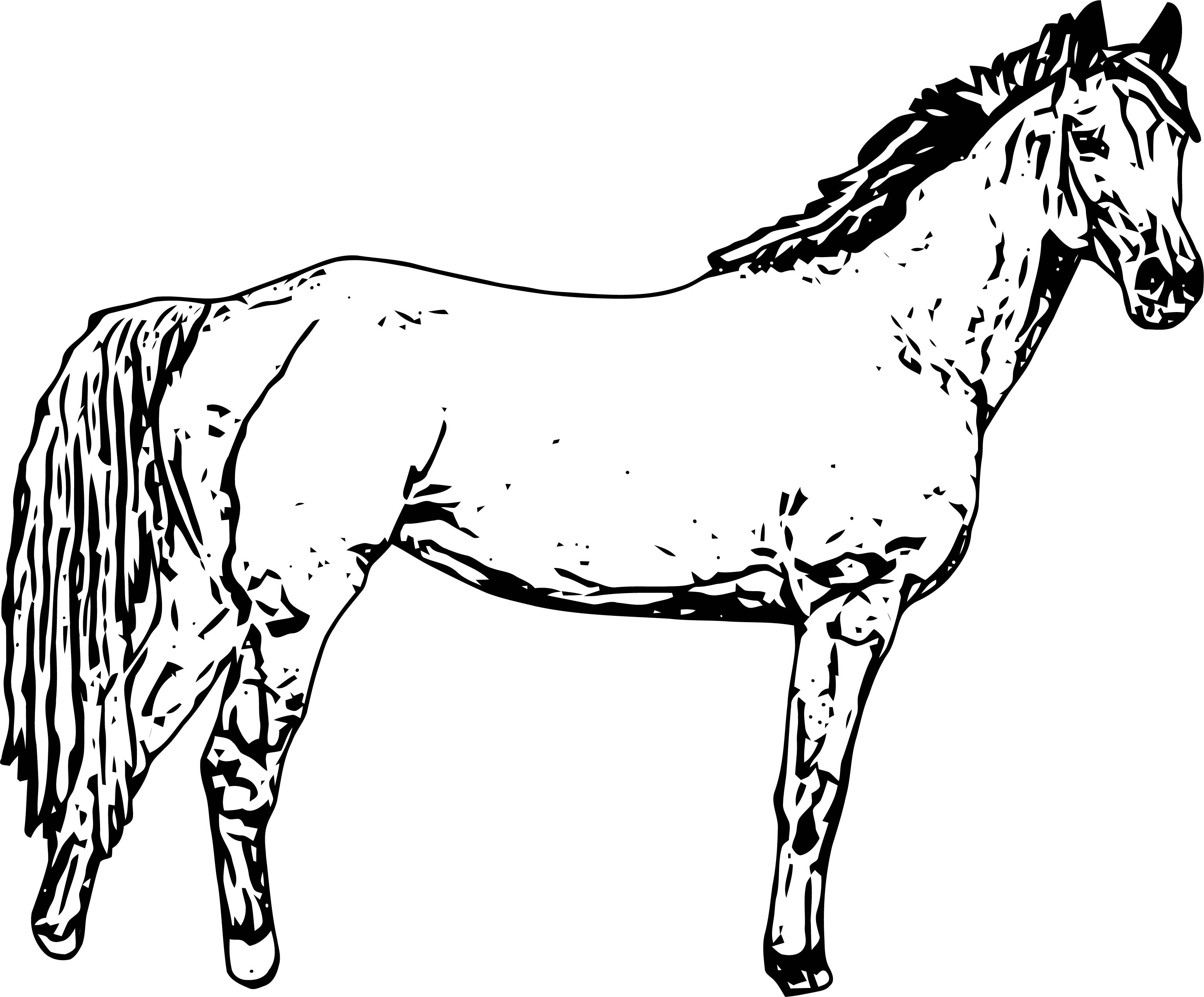 Horse Coloring Page Wecoloringpage 158