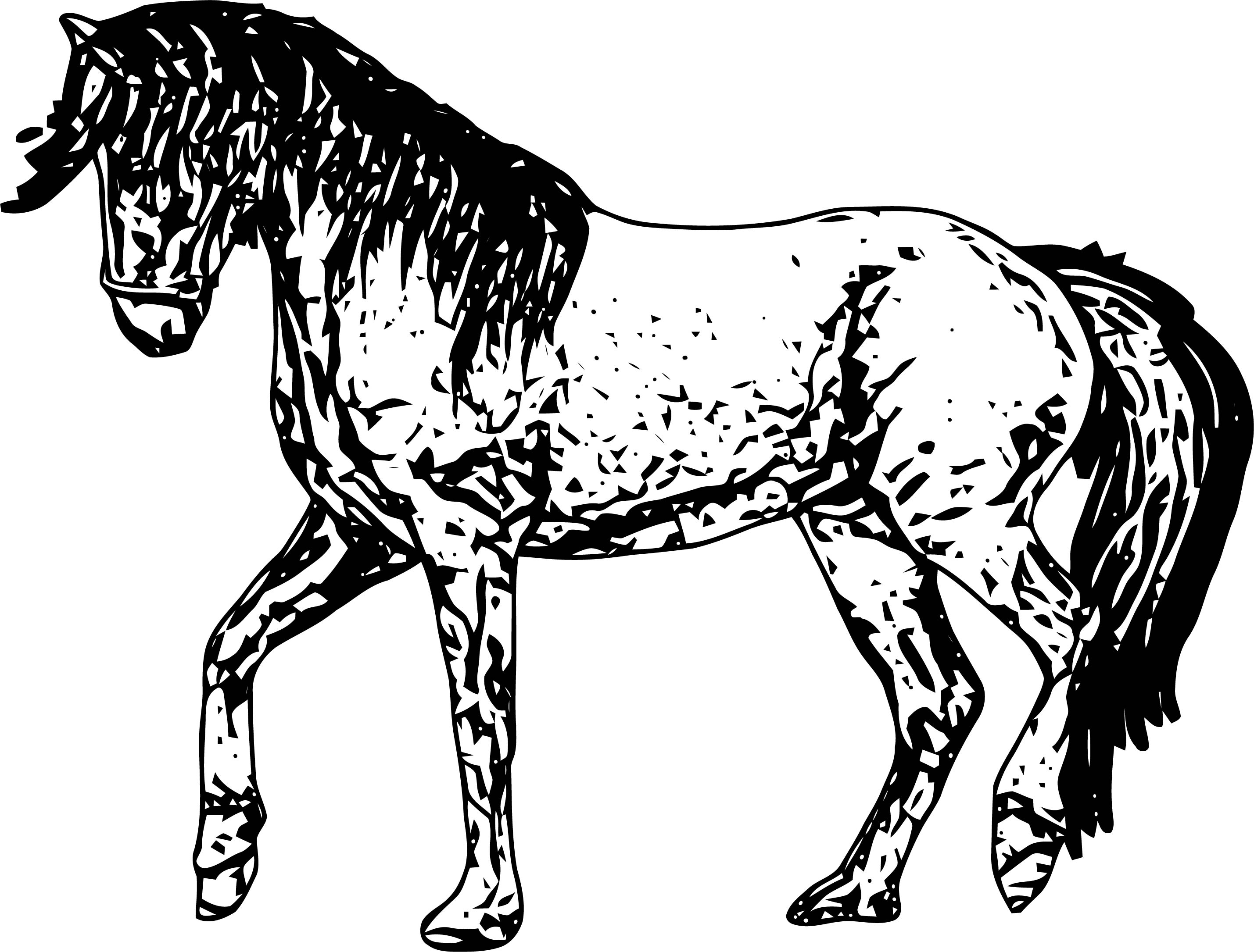 Horse Coloring Page Wecoloringpage 164