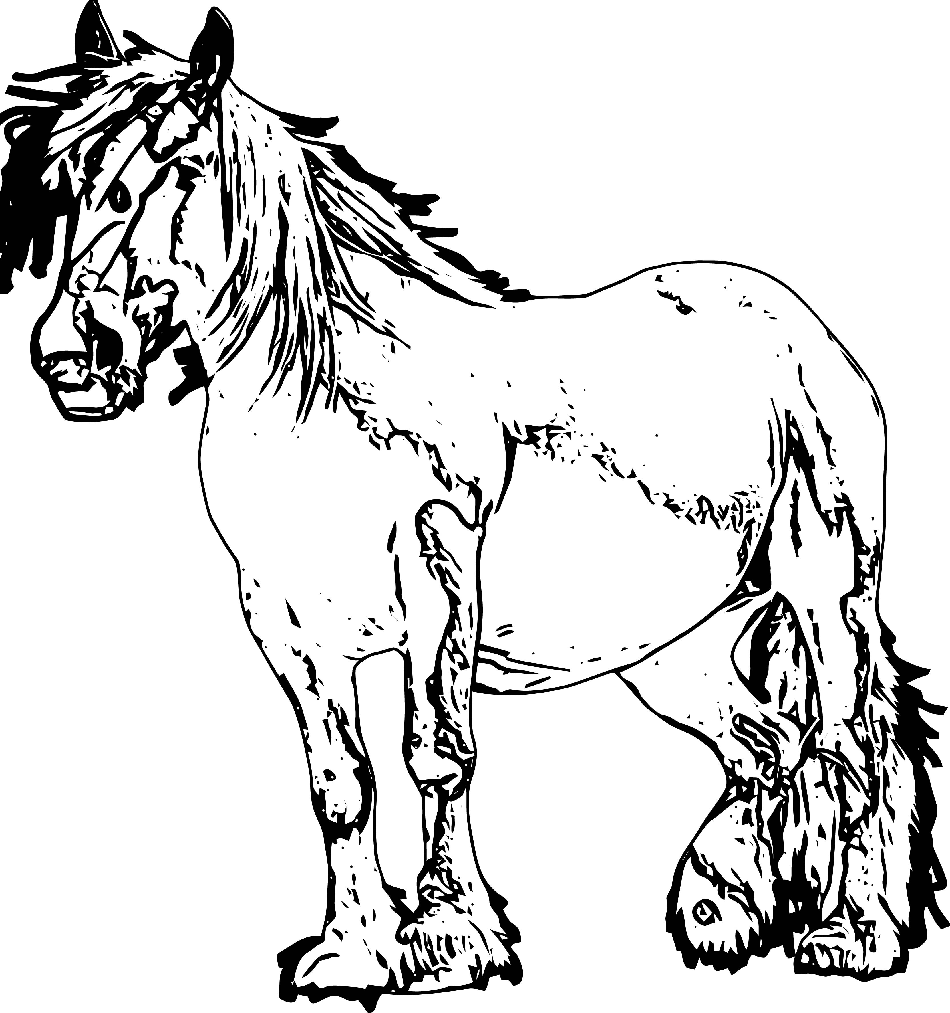 Horse Coloring Page Wecoloringpage 166
