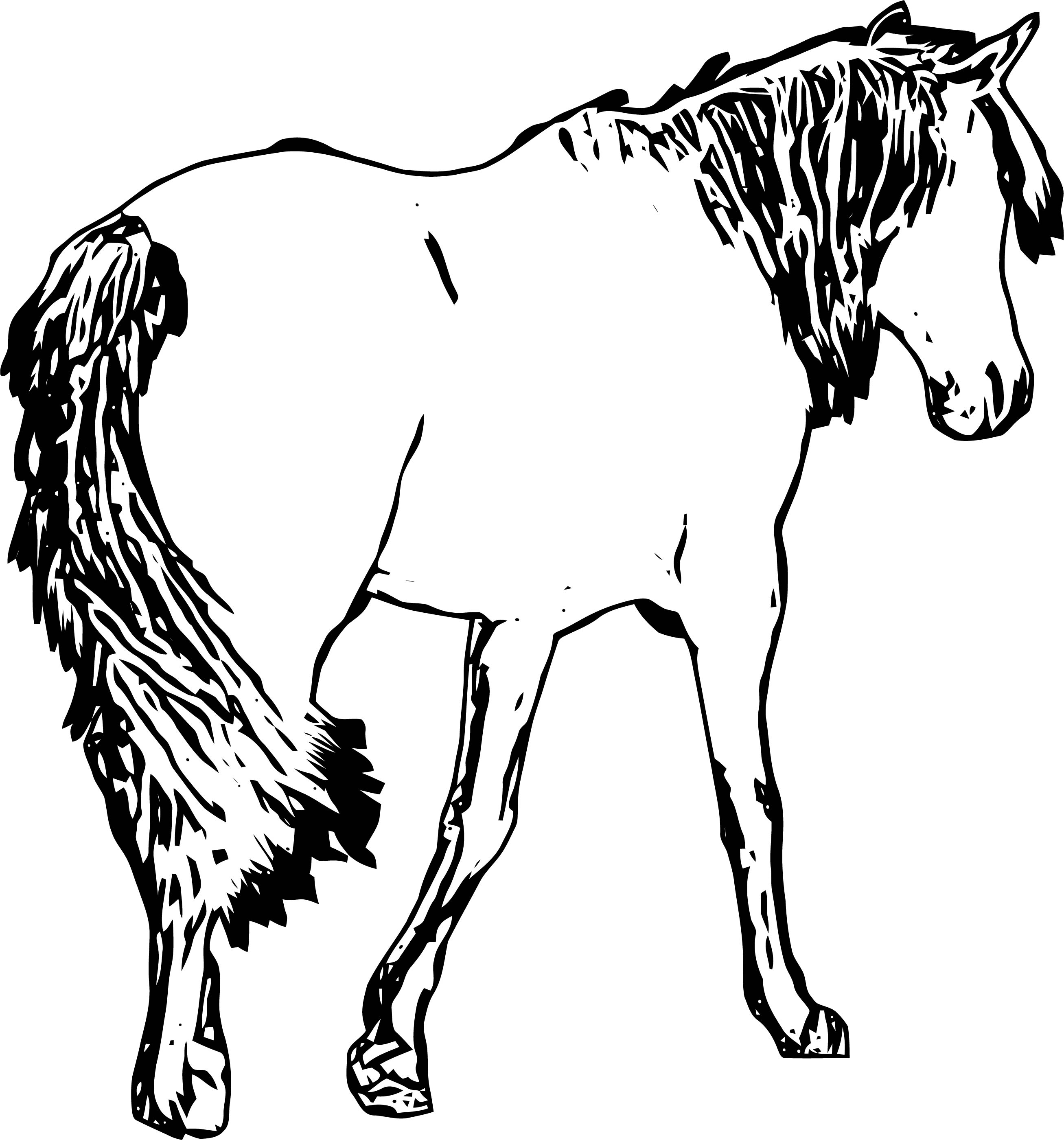 Horse Coloring Page Wecoloringpage 168