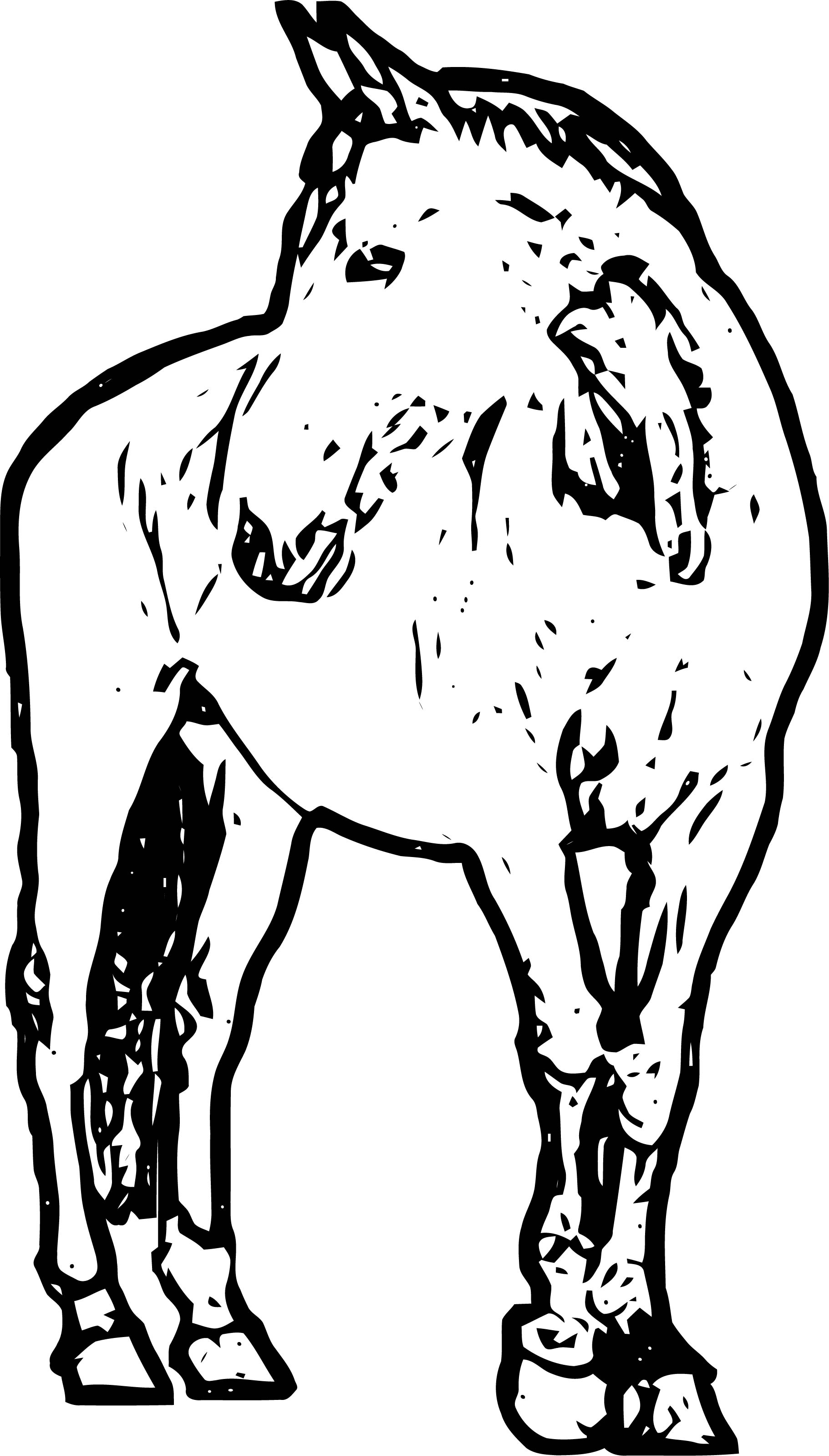 Horse Coloring Page Wecoloringpage 172