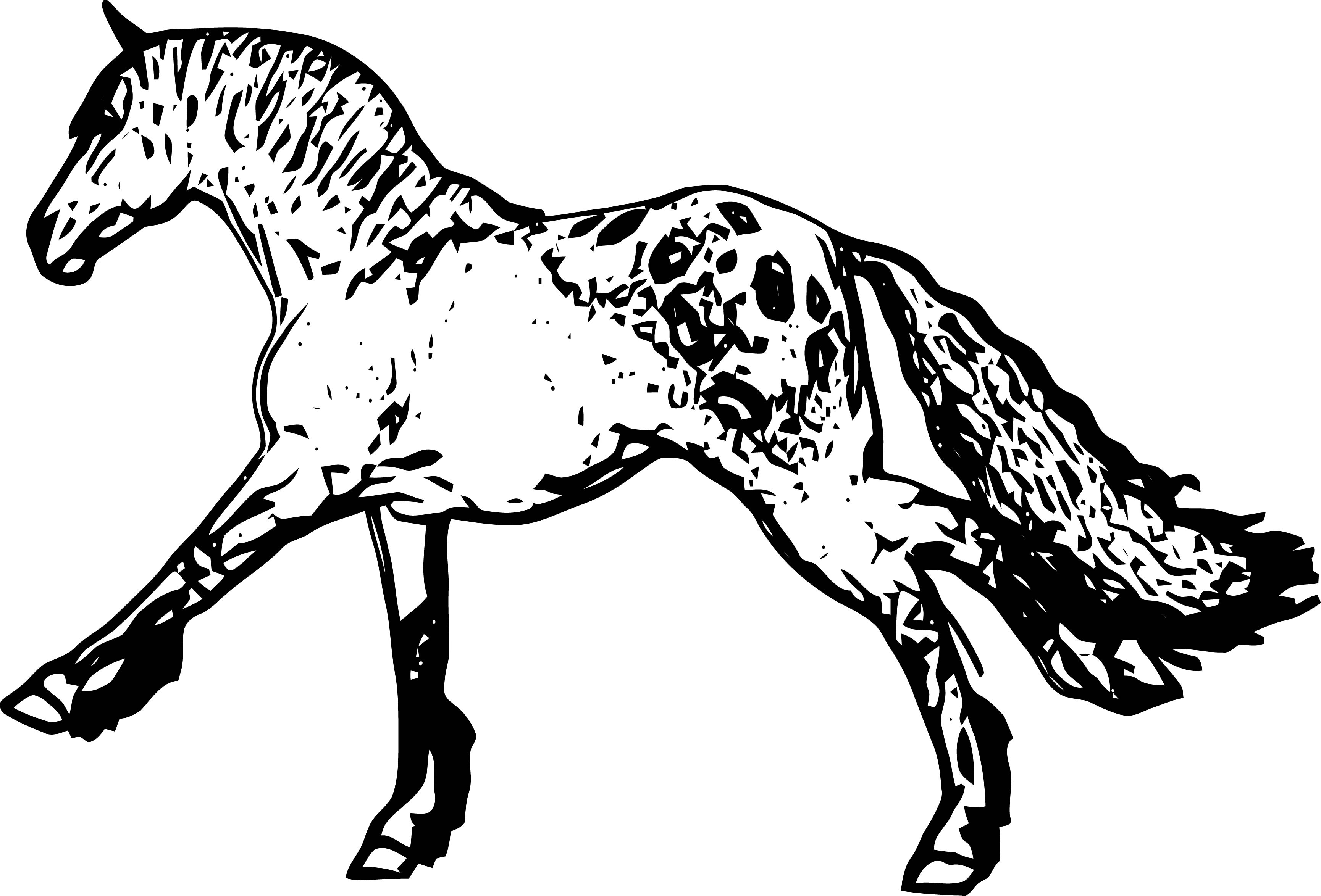 Horse Coloring Page Wecoloringpage 178