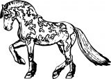 Horse Coloring Page Wecoloringpage 179