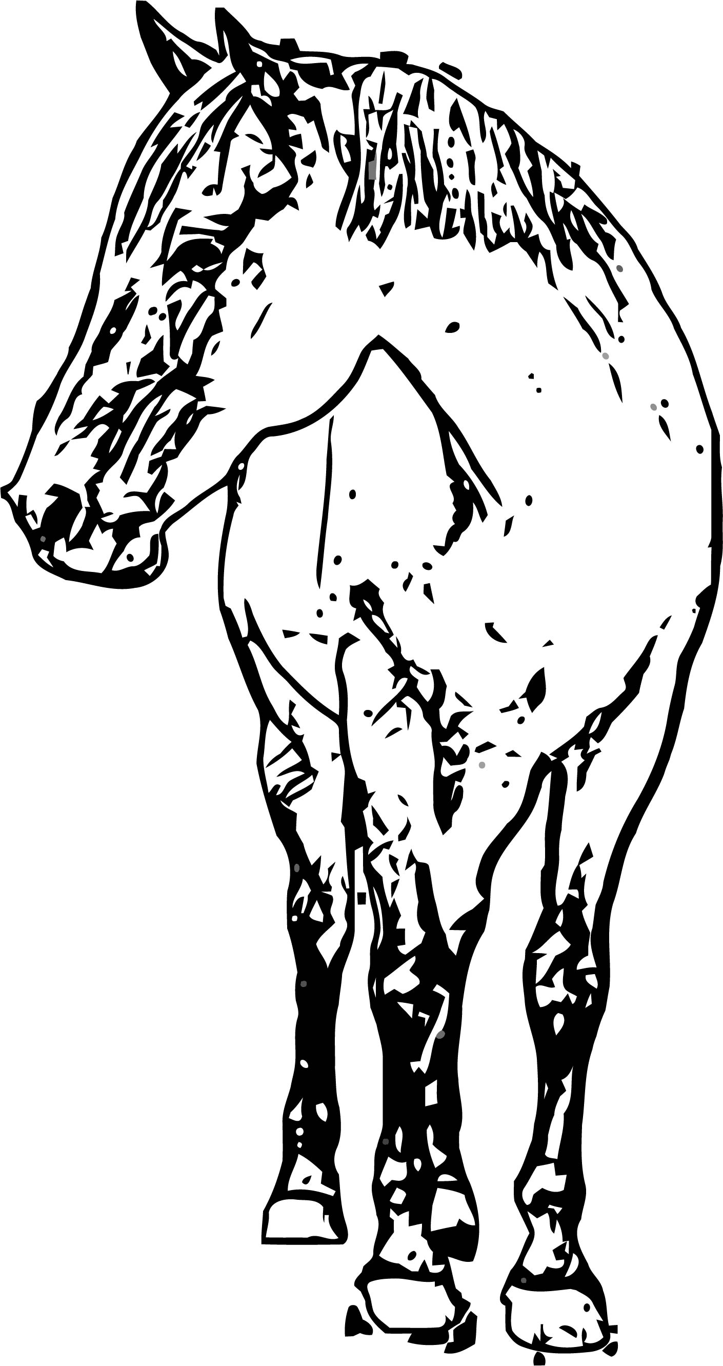 Horse Coloring Page Wecoloringpage 181