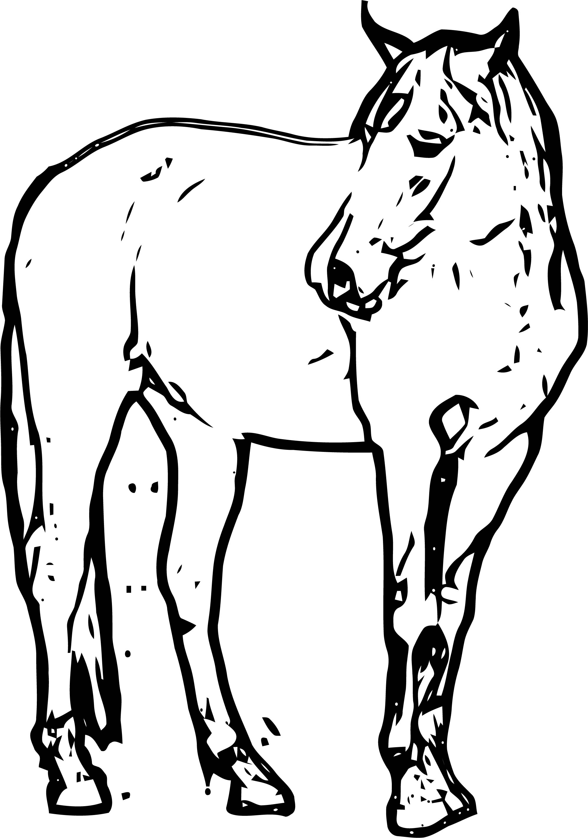 Horse Coloring Page Wecoloringpage 187