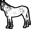 Horse Coloring Page Wecoloringpage 189