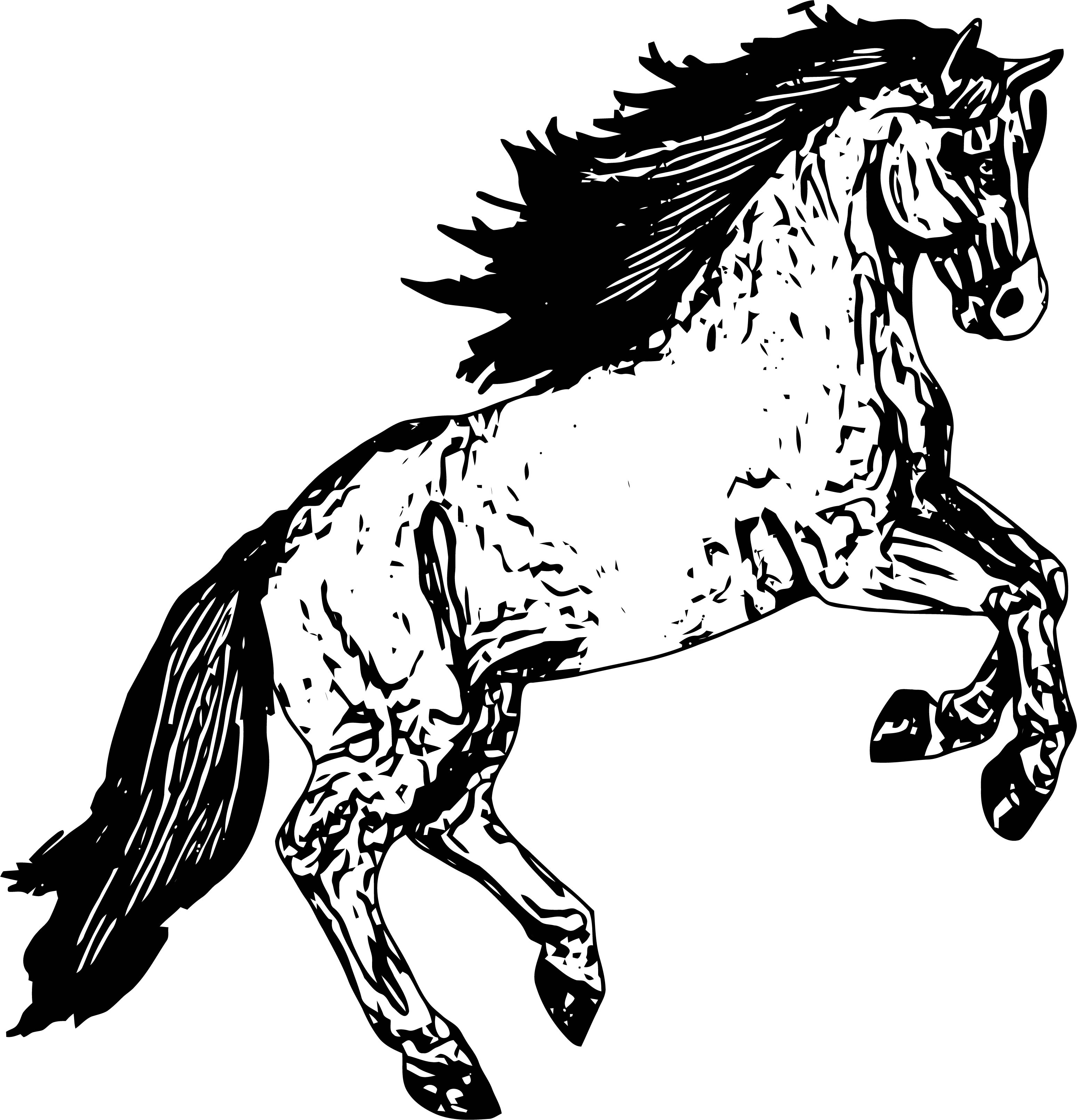 Horse Coloring Page Wecoloringpage 191