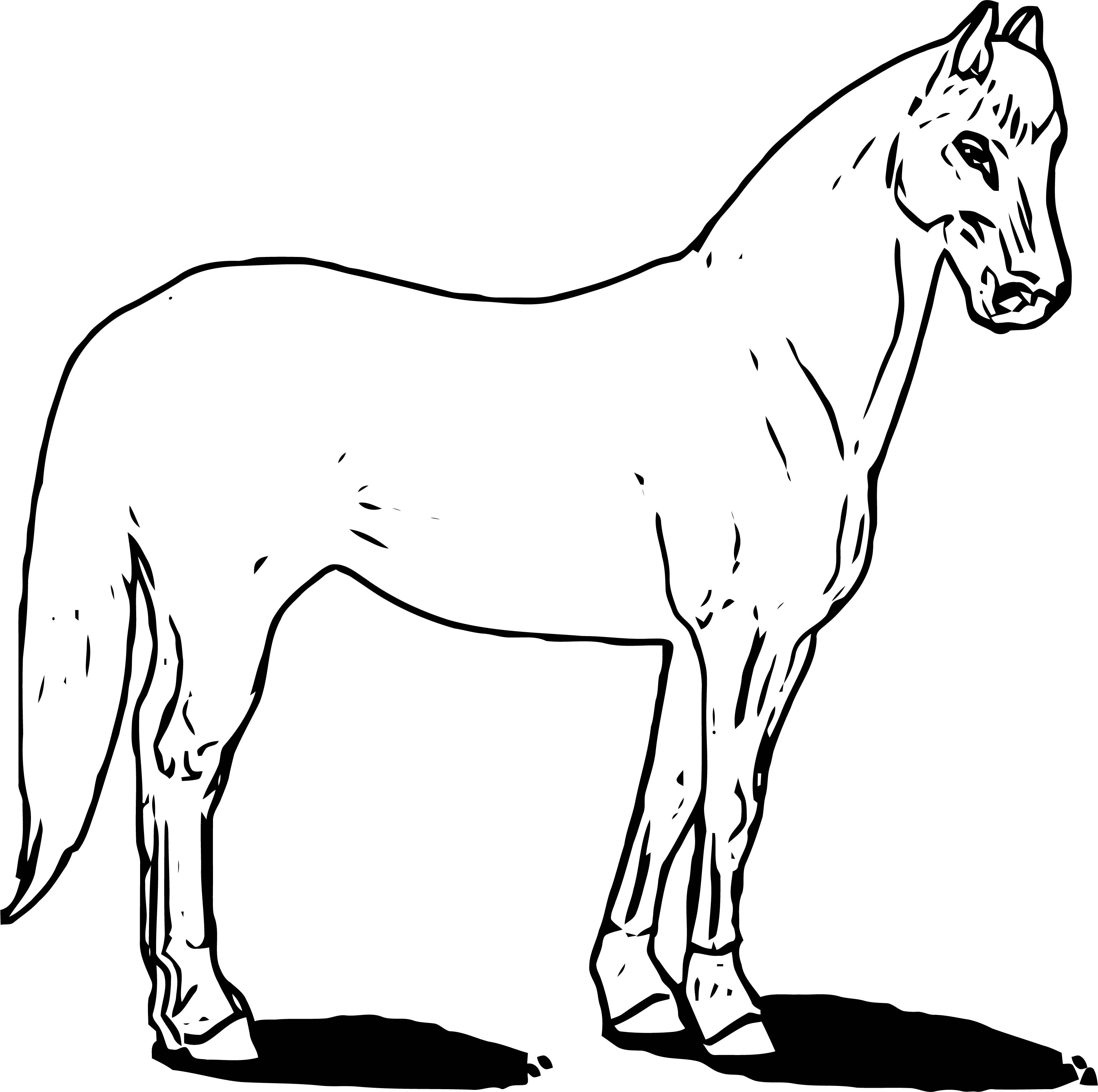 Horse Coloring Page Wecoloringpage 192