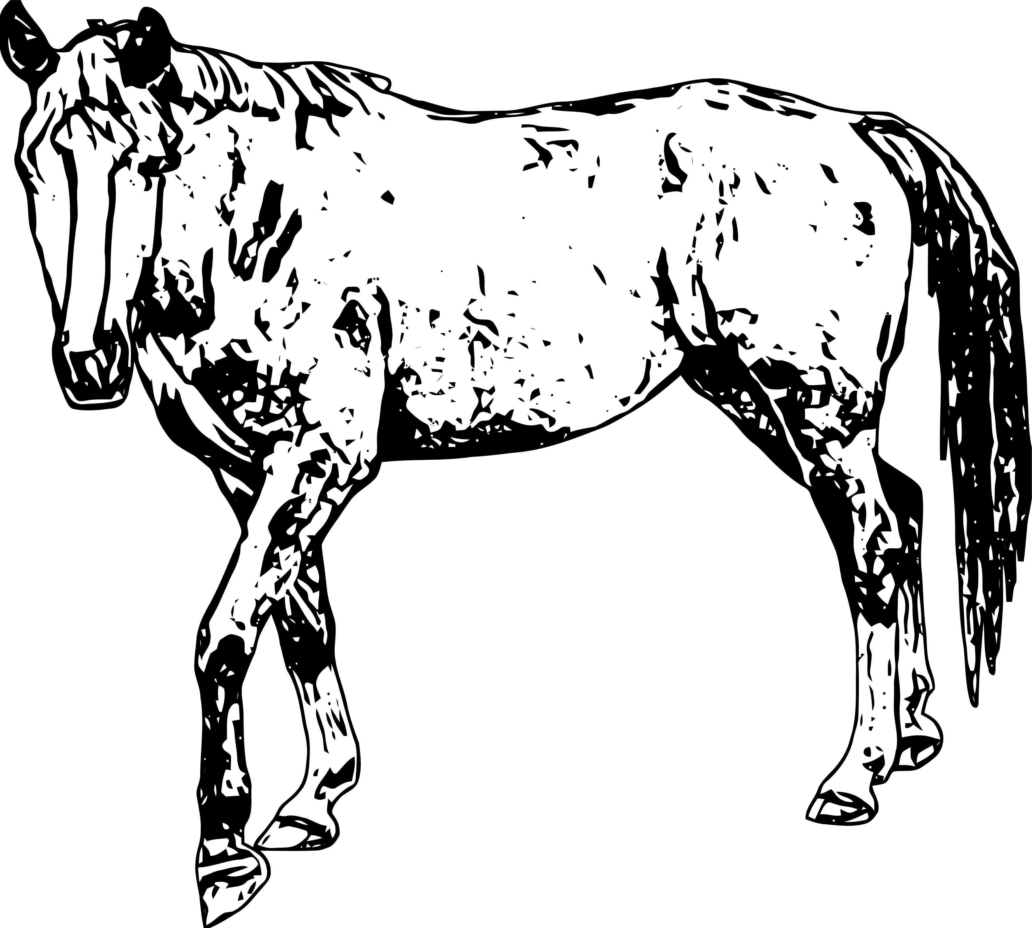 Horse Coloring Page Wecoloringpage 195