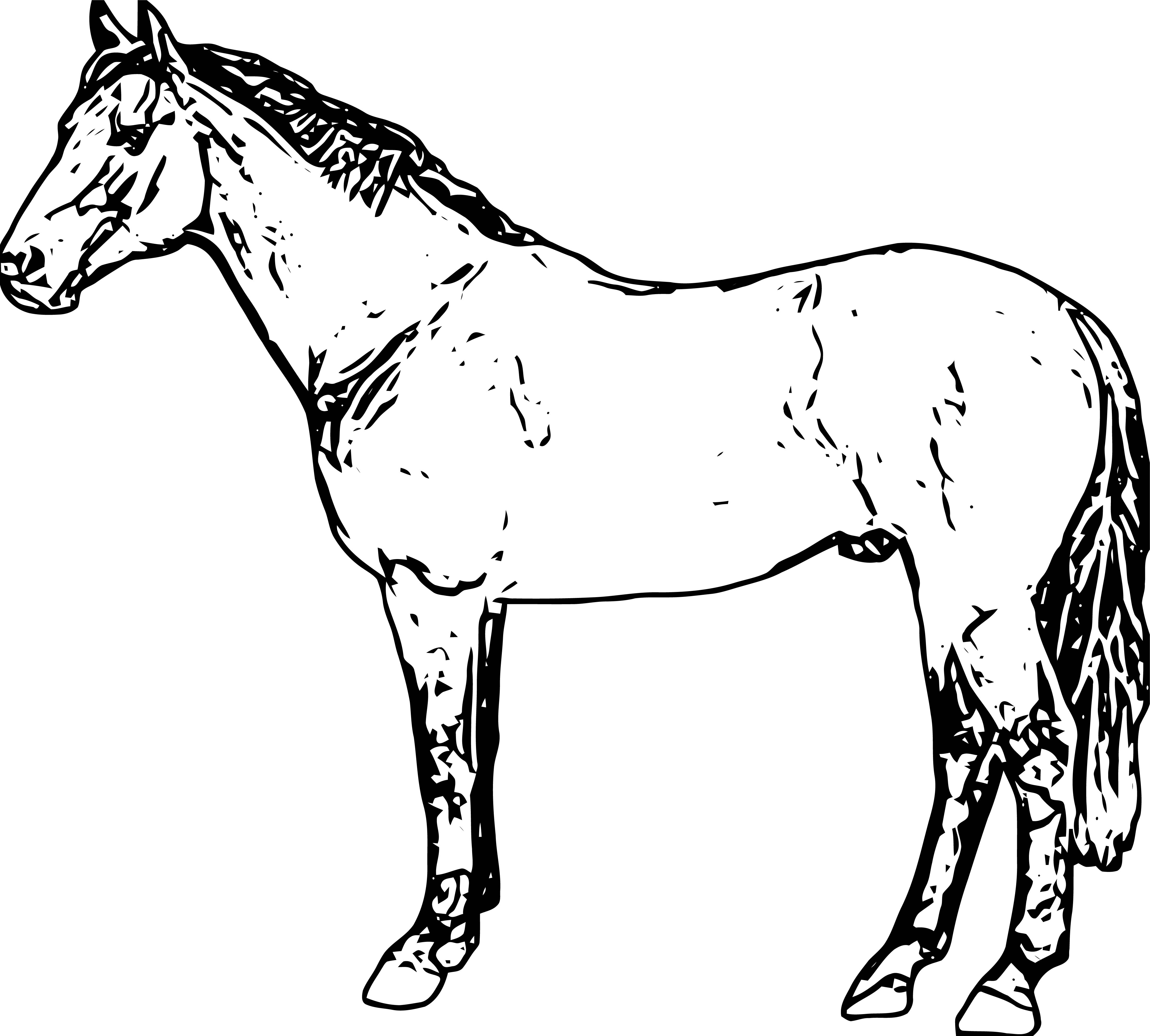 Horse Coloring Page Wecoloringpage 196