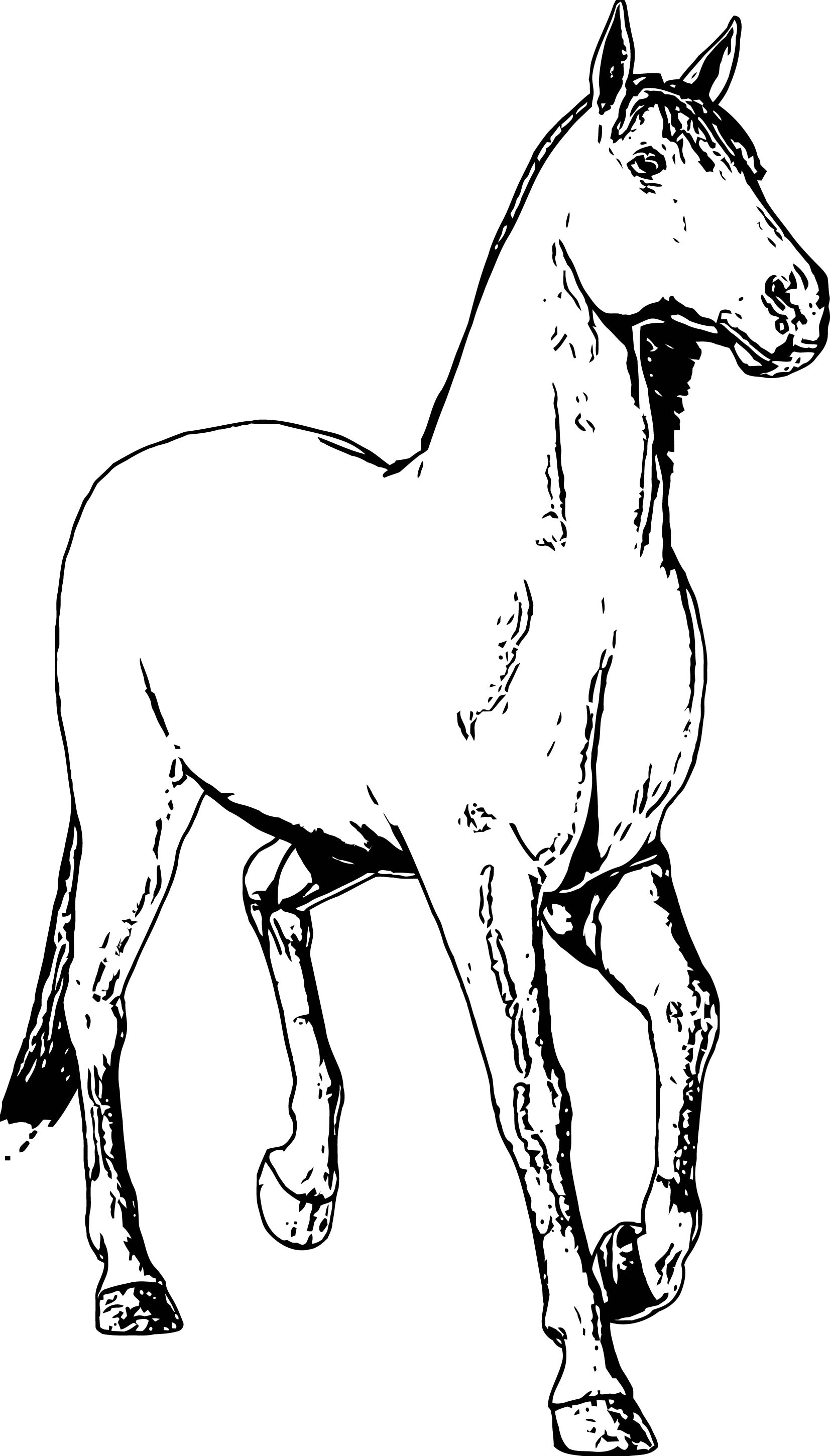 Horse Coloring Page Wecoloringpage 199