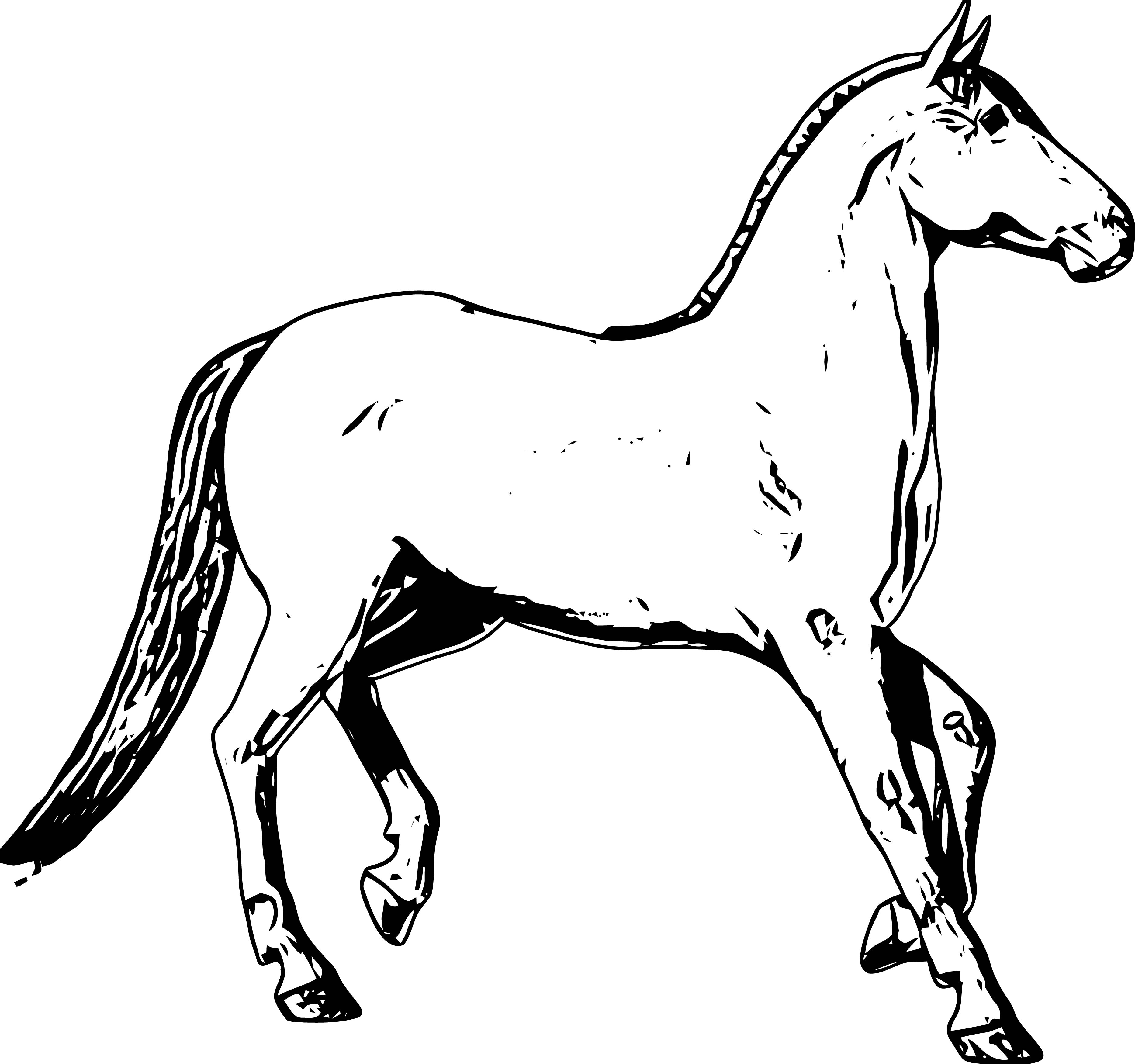 Horse Coloring Page Wecoloringpage 200