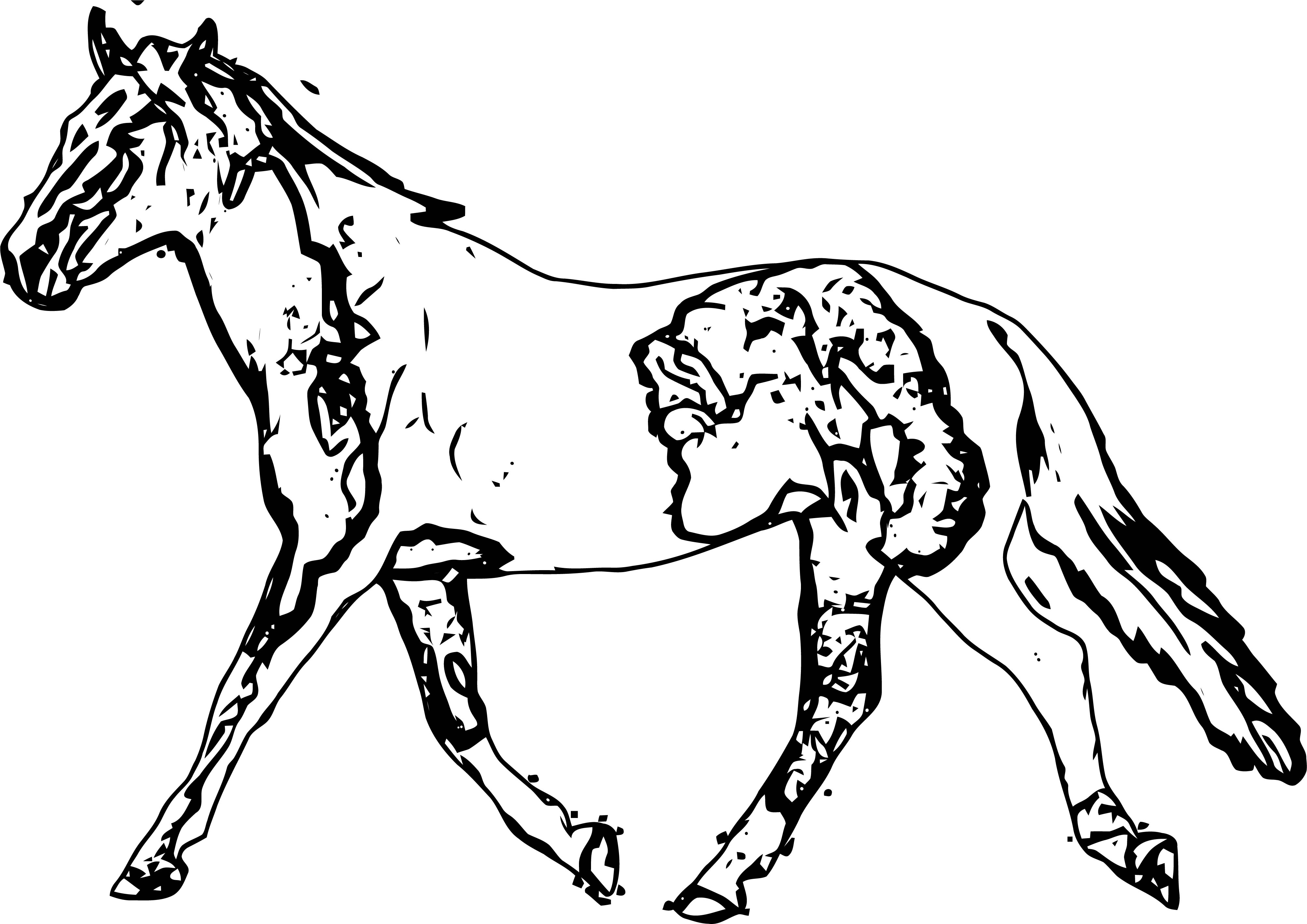 Horse Coloring Page Wecoloringpage 208