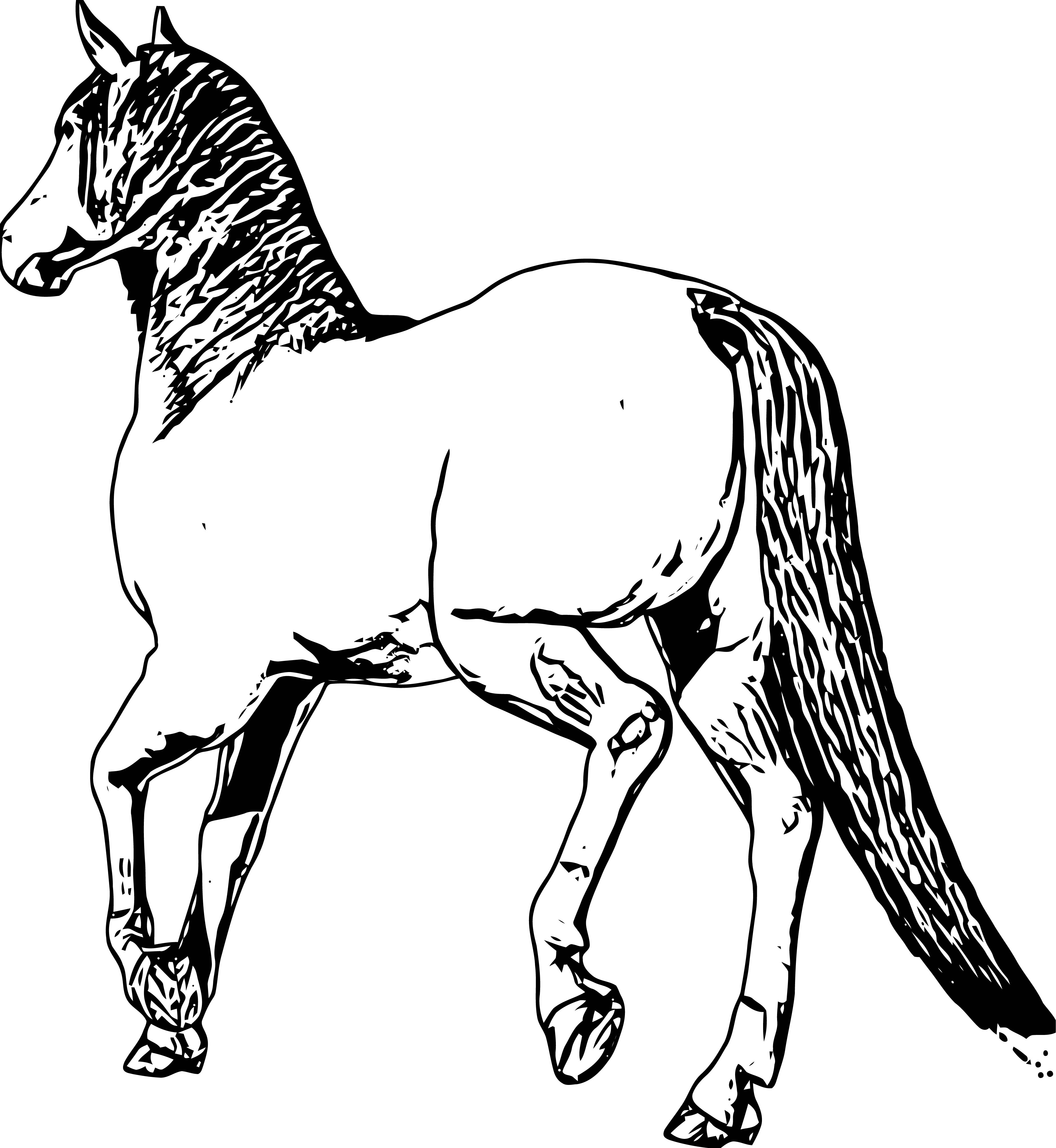 Horse Coloring Page Wecoloringpage 213