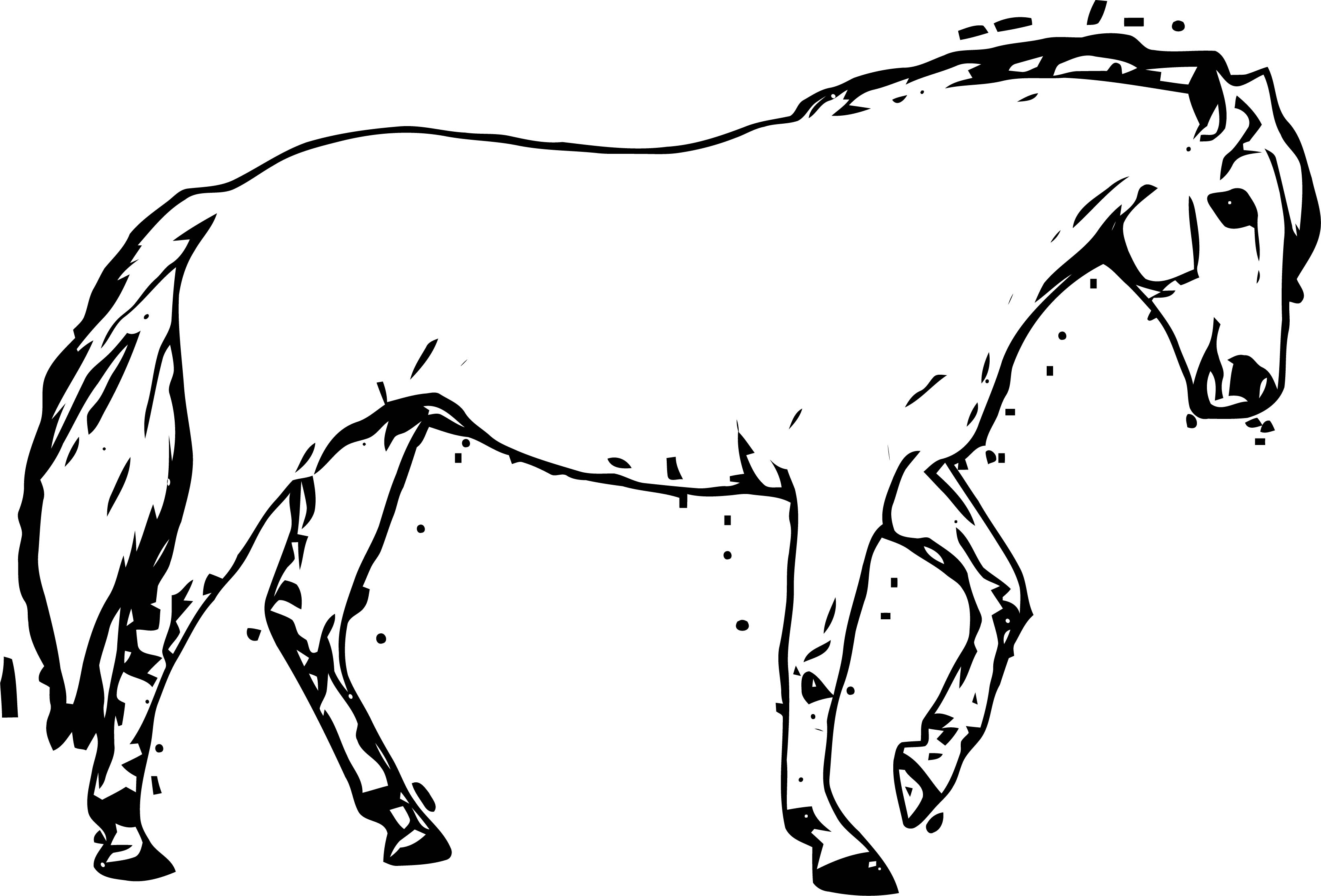 Horse Coloring Page Wecoloringpage 220