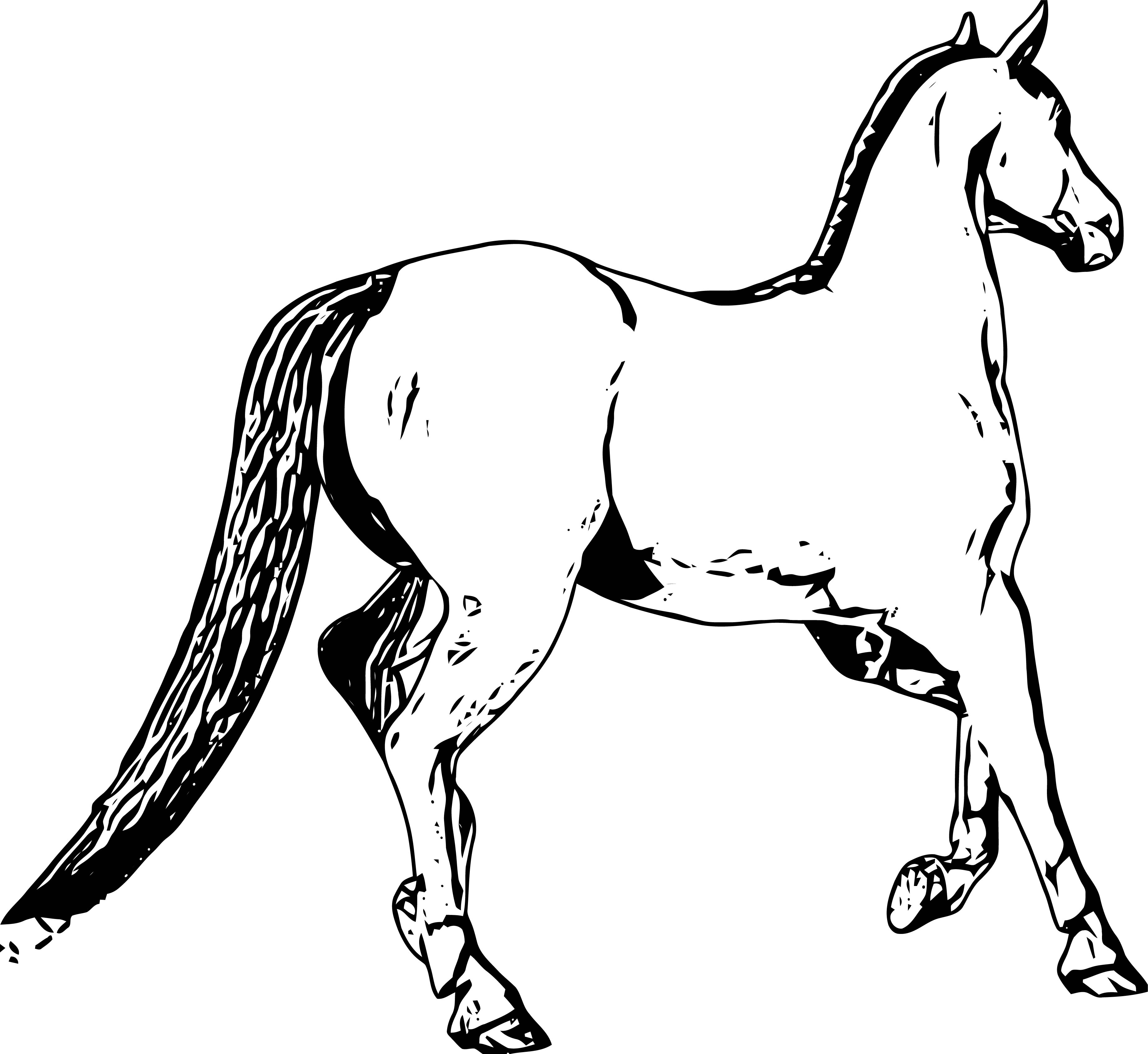 Horse Coloring Page Wecoloringpage 221