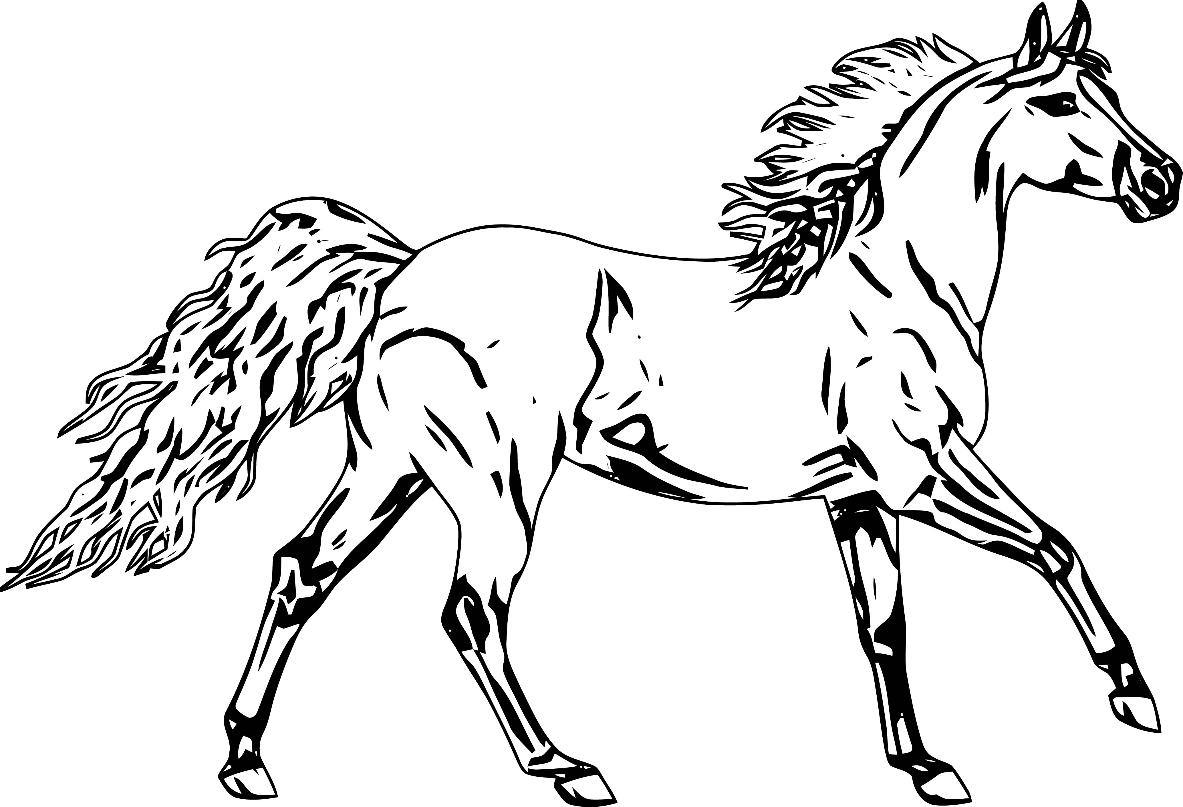 Horse Coloring Page Wecoloringpage 236
