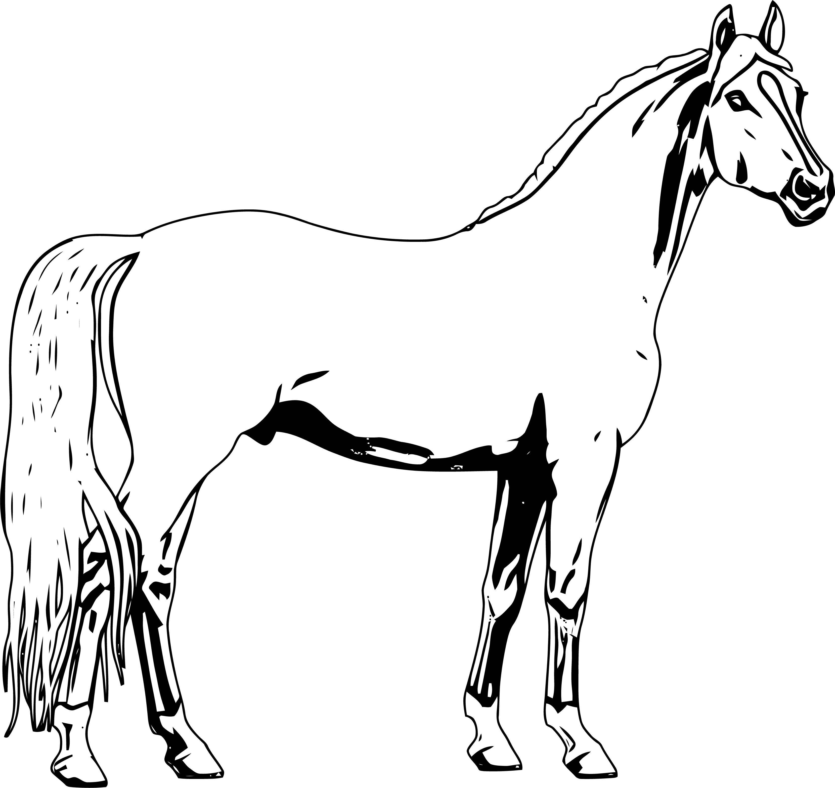 Horse Coloring Page Wecoloringpage 237
