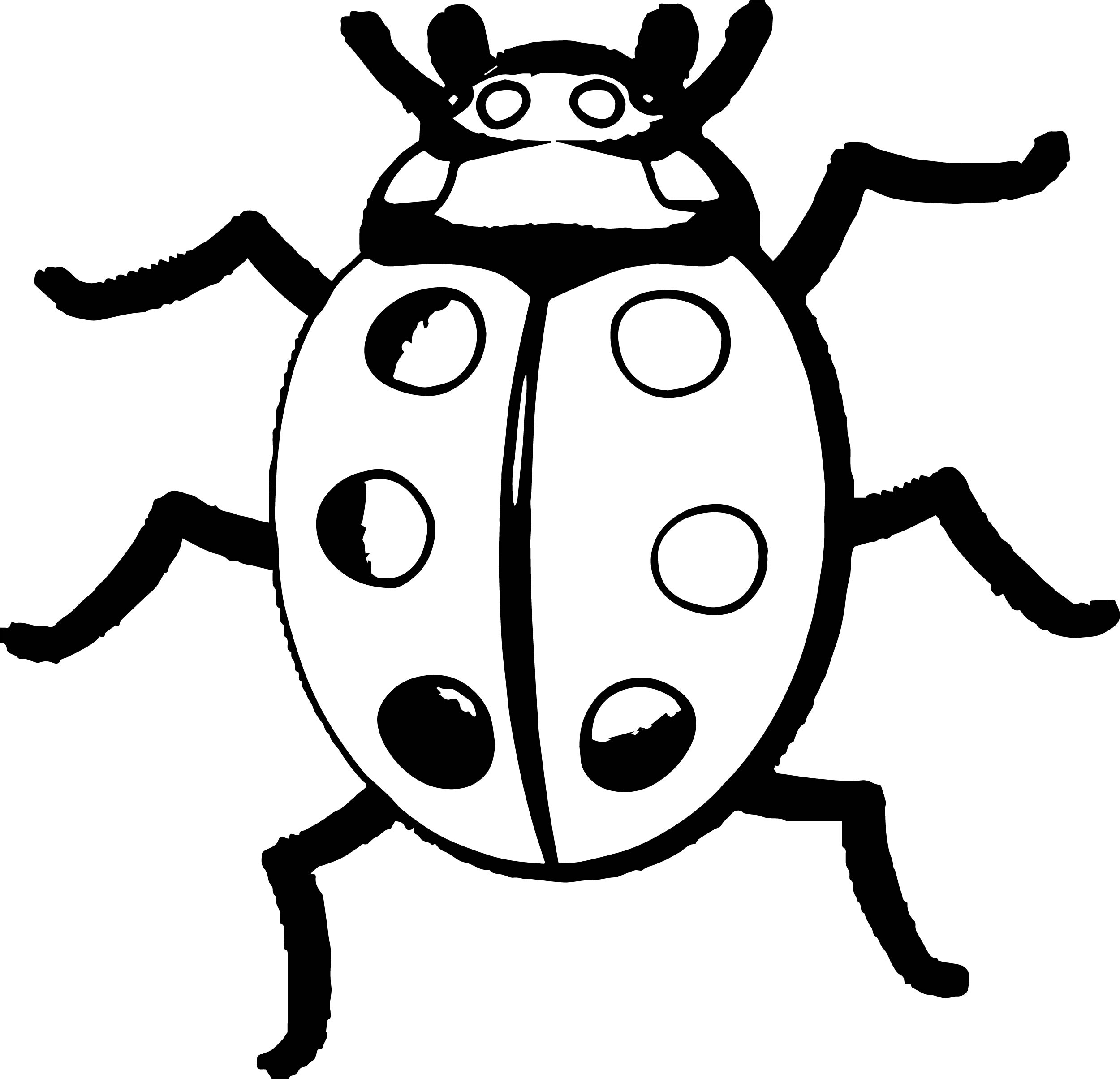 Insect Coloring Page WeColoringPage 41