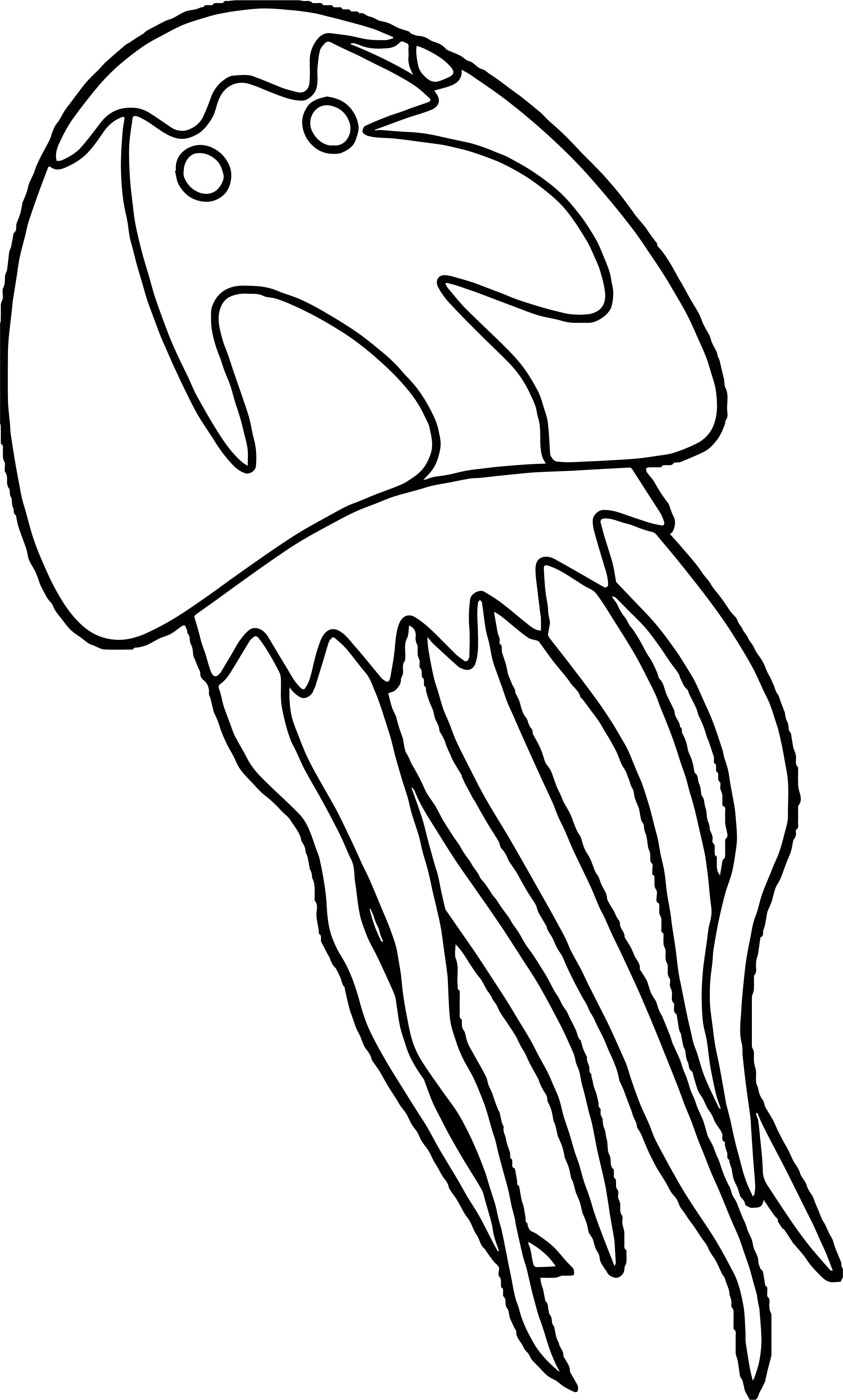 Jellyfish Up Coloring Page