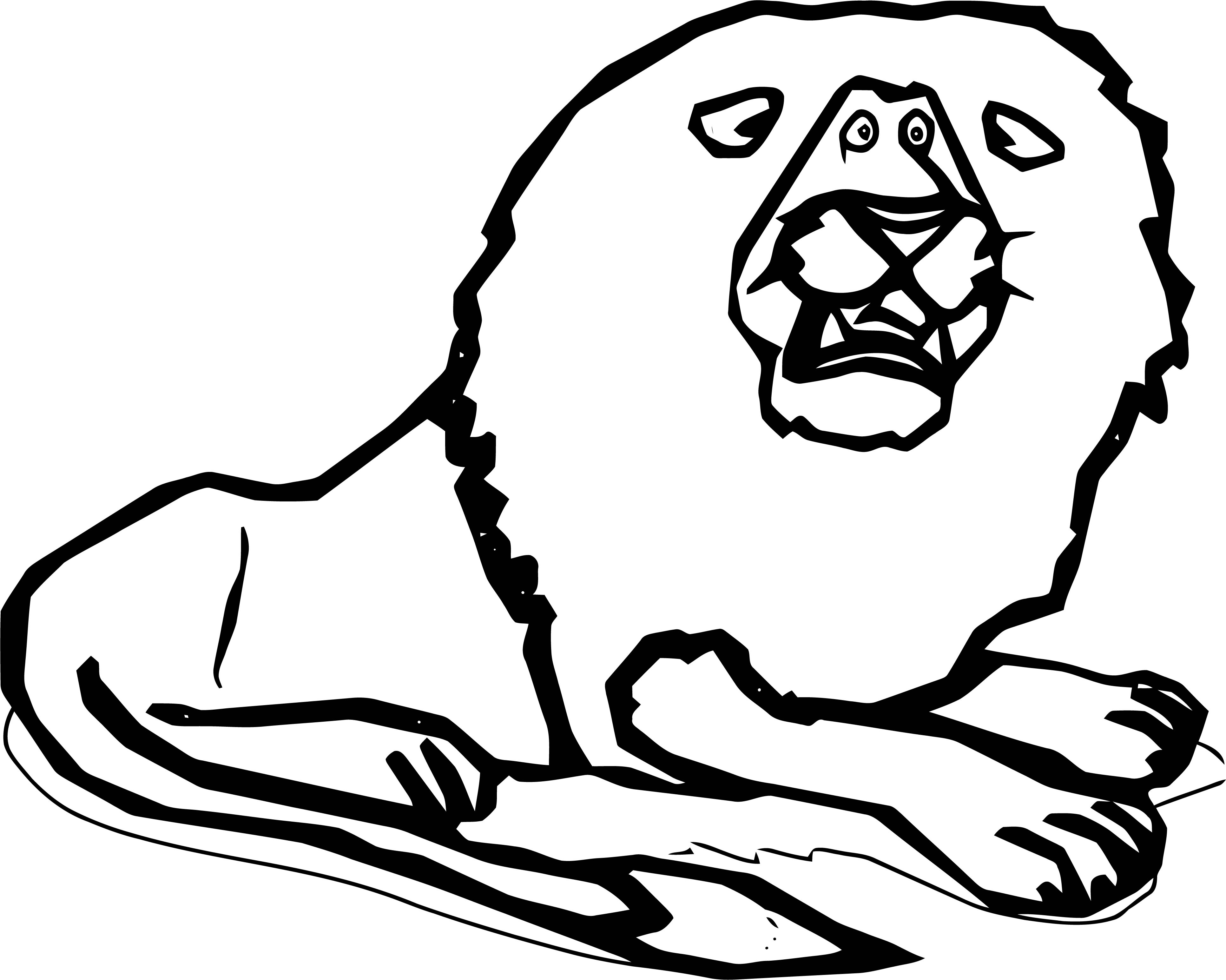 Lion Coloring Page 07