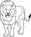 Lion Coloring Page 46