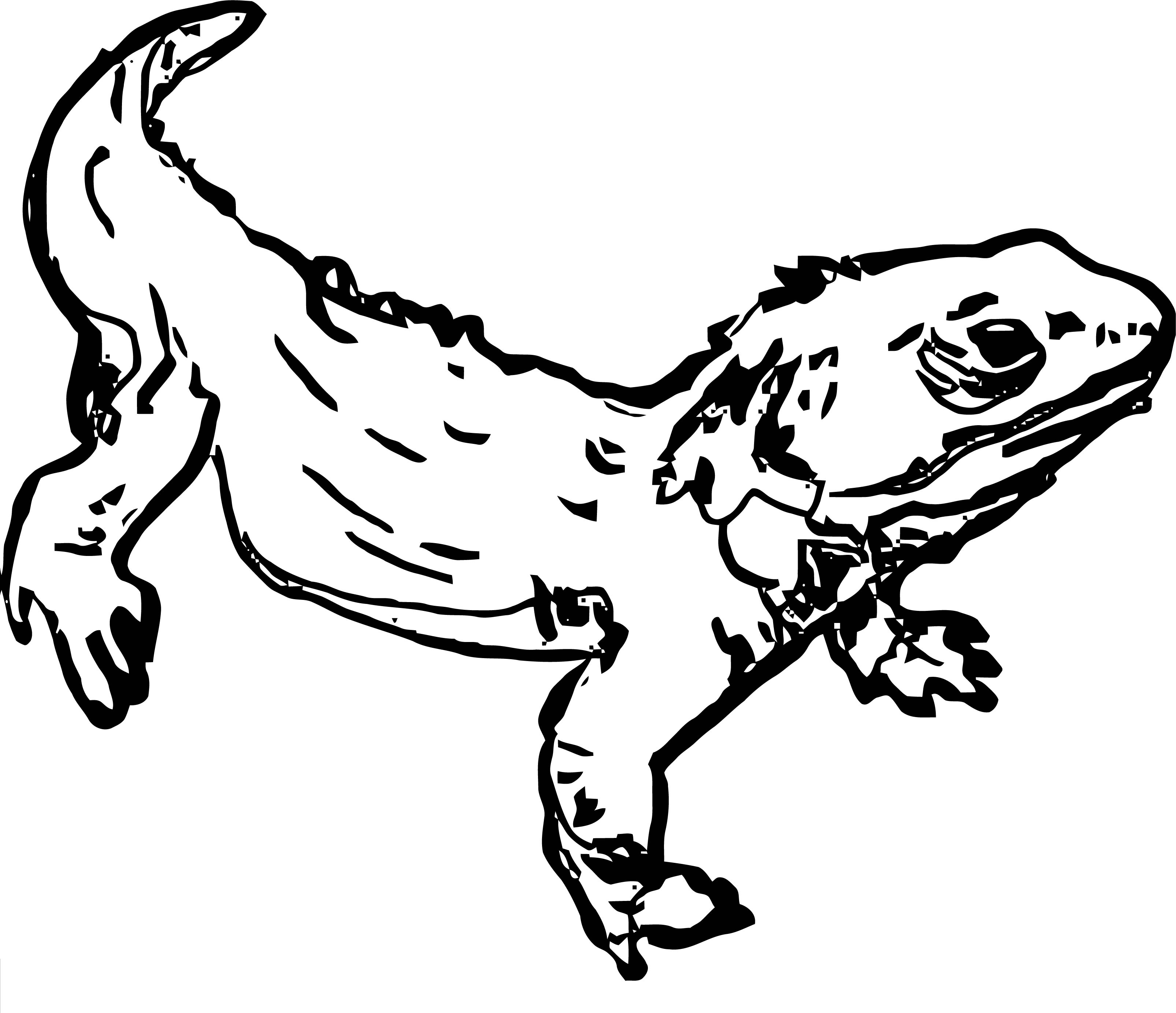 Lizard Coloring Page 19