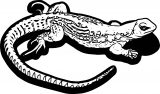 Lizard Coloring Page 25