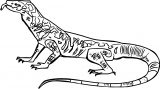 Lizard Side View Coloring Page