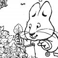 Rubys Leaf Collection Max And Ruby Coloring Page