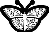 butterfly black outline coloring page 3