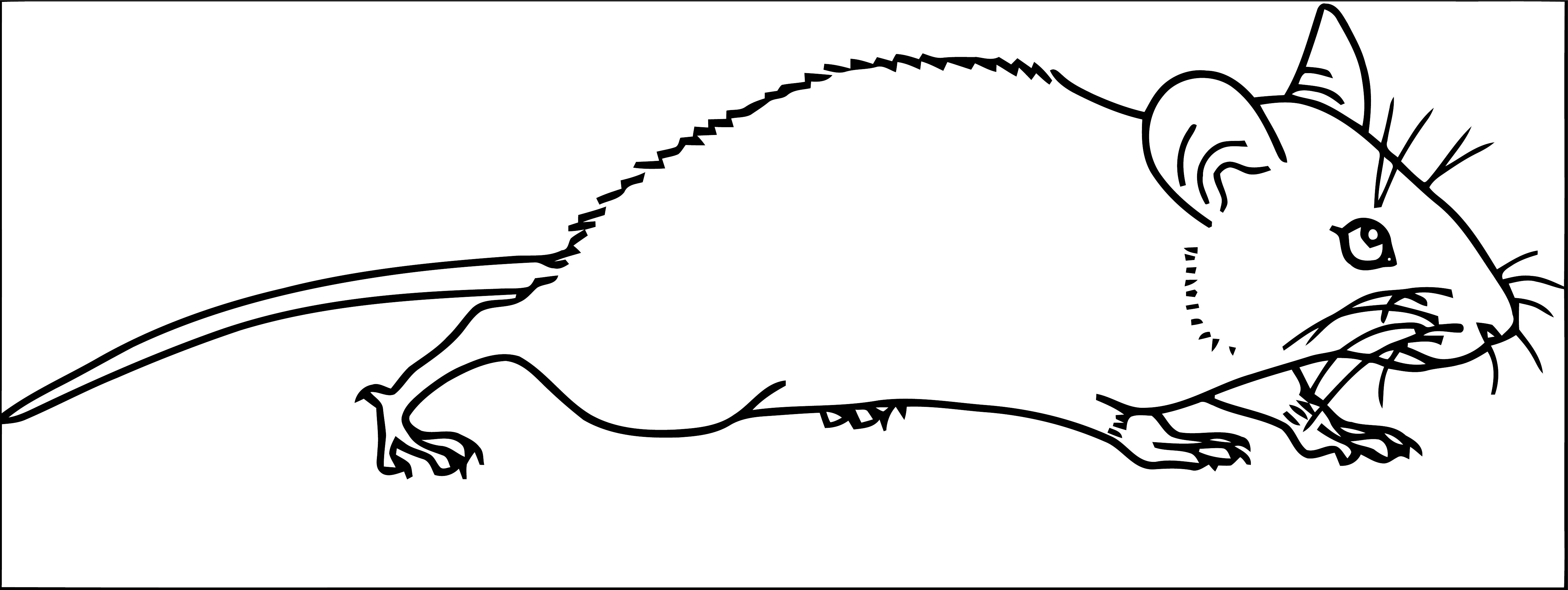 Mouse Coloring Page 73