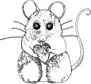 Mouse Coloring Page 84