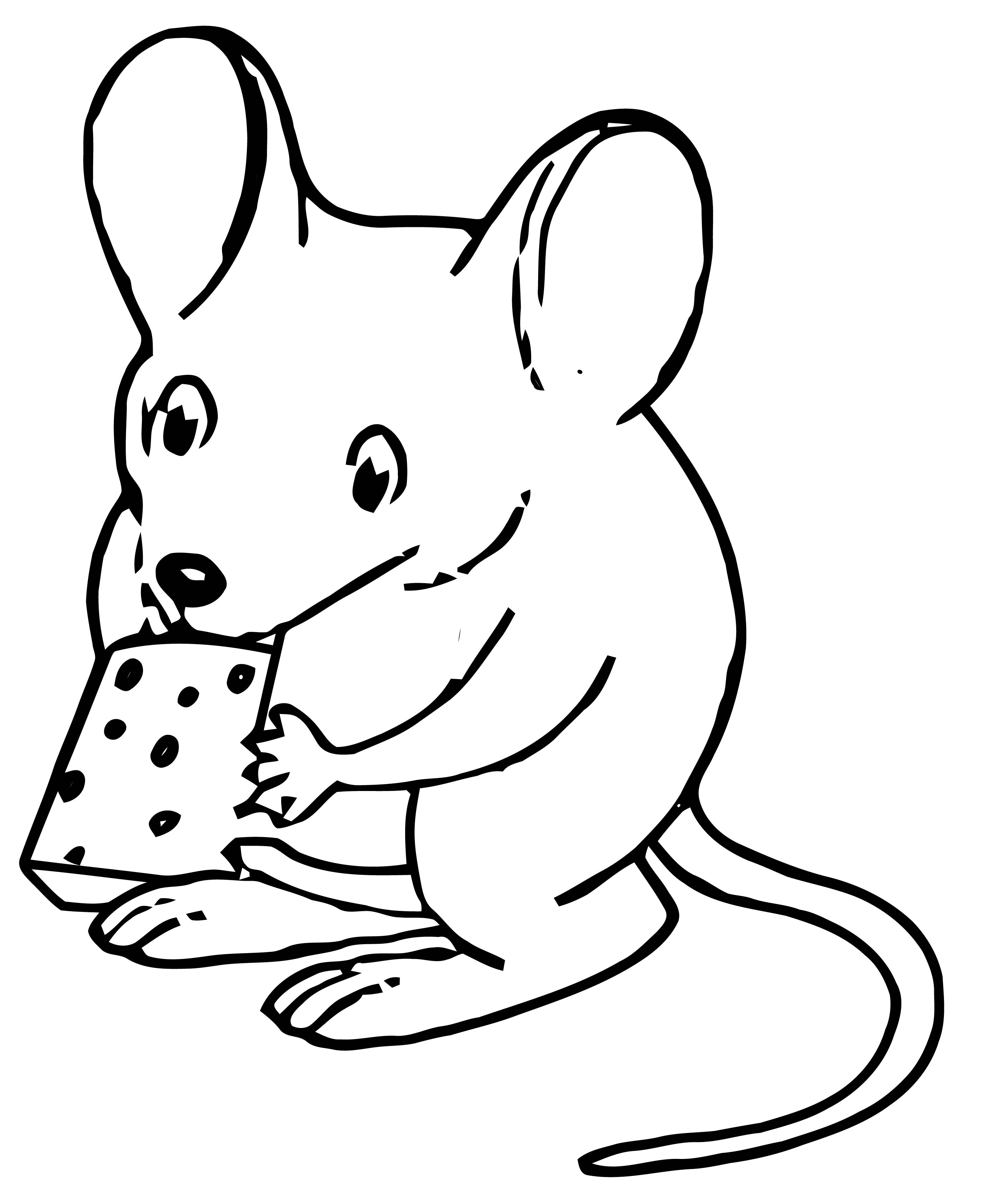 Mouse Holding Cheese Coloring Page