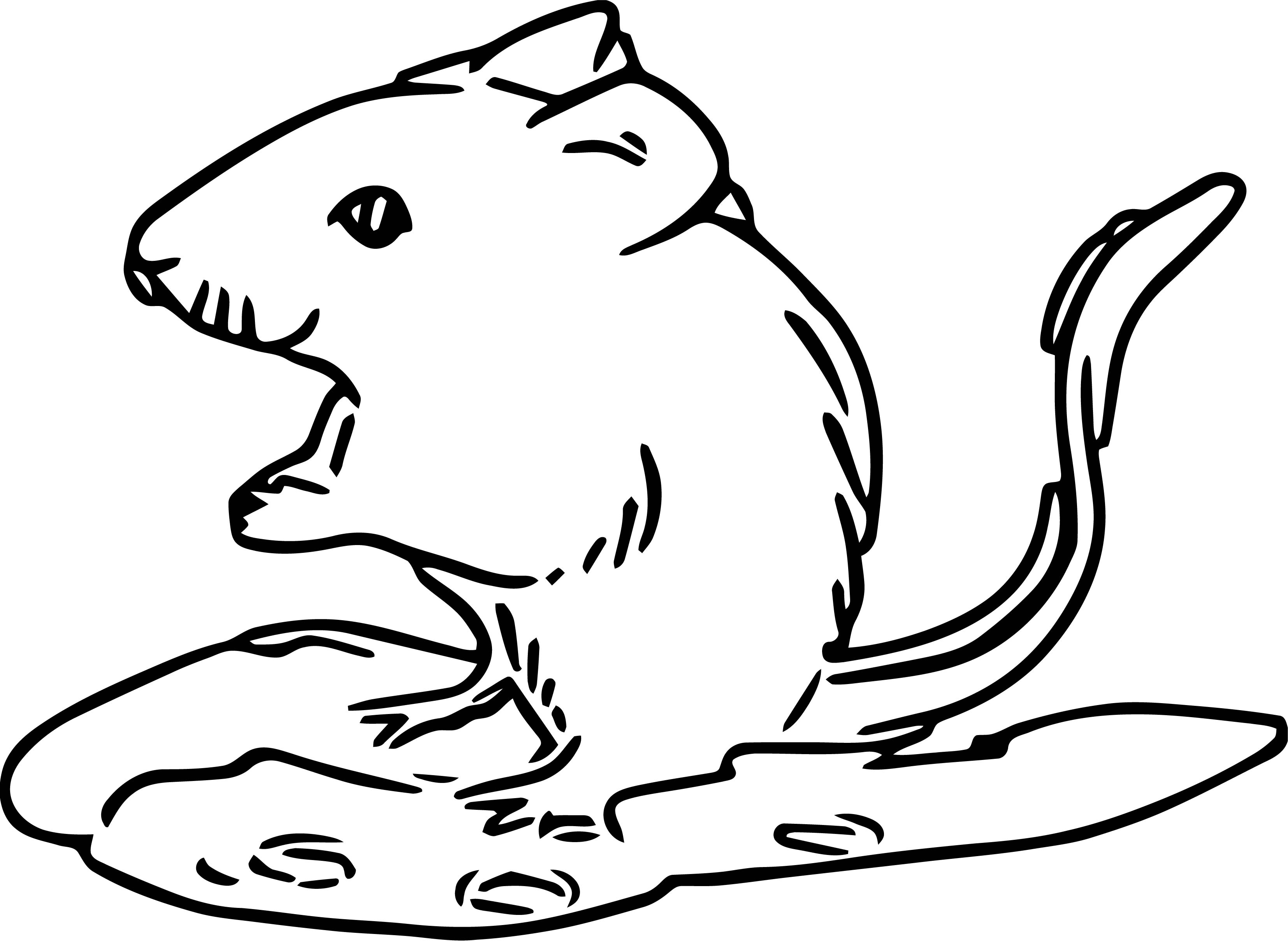 Mouse Jpeg Coloring Page 03