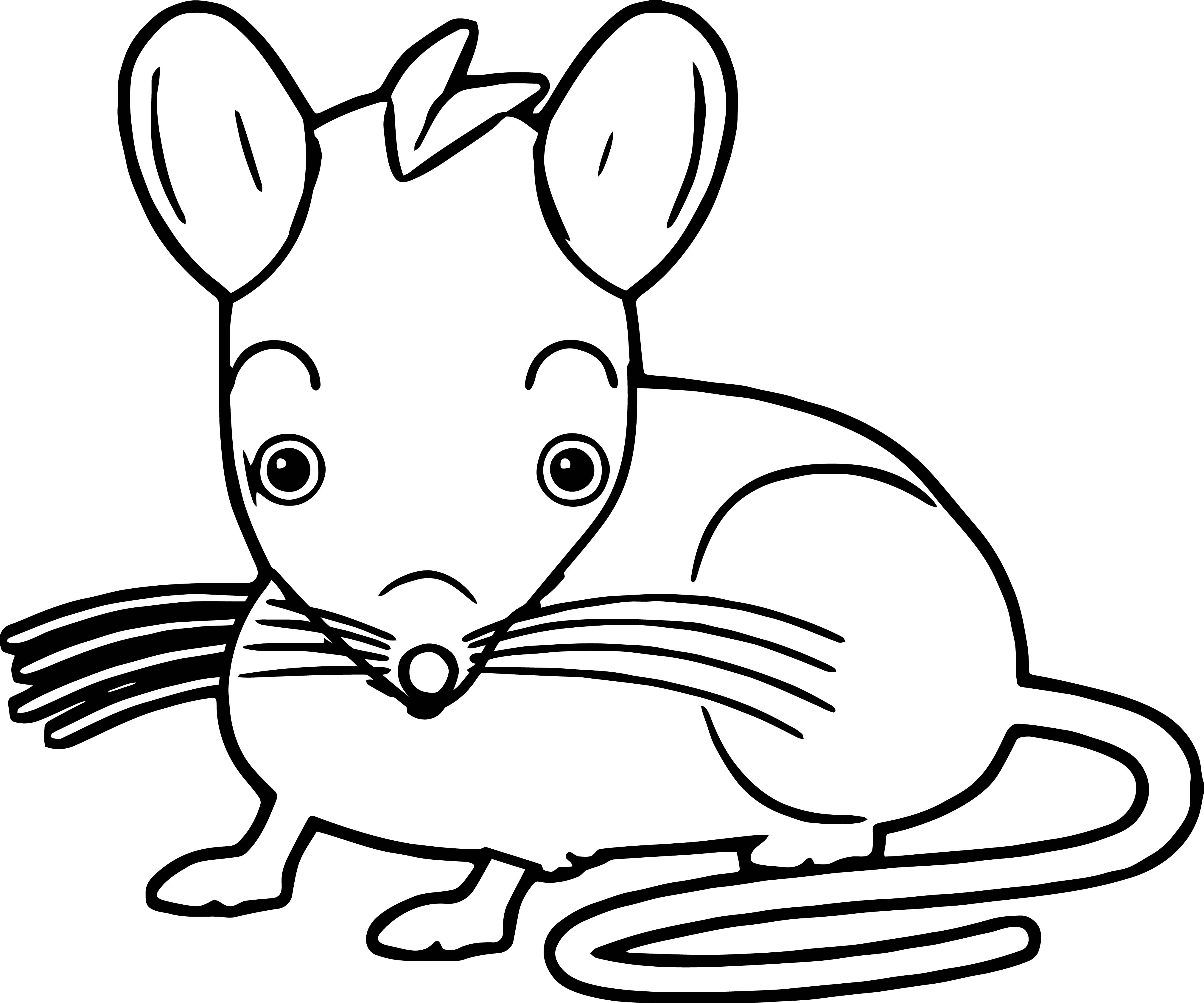Mouse Jpeg Coloring Page 08