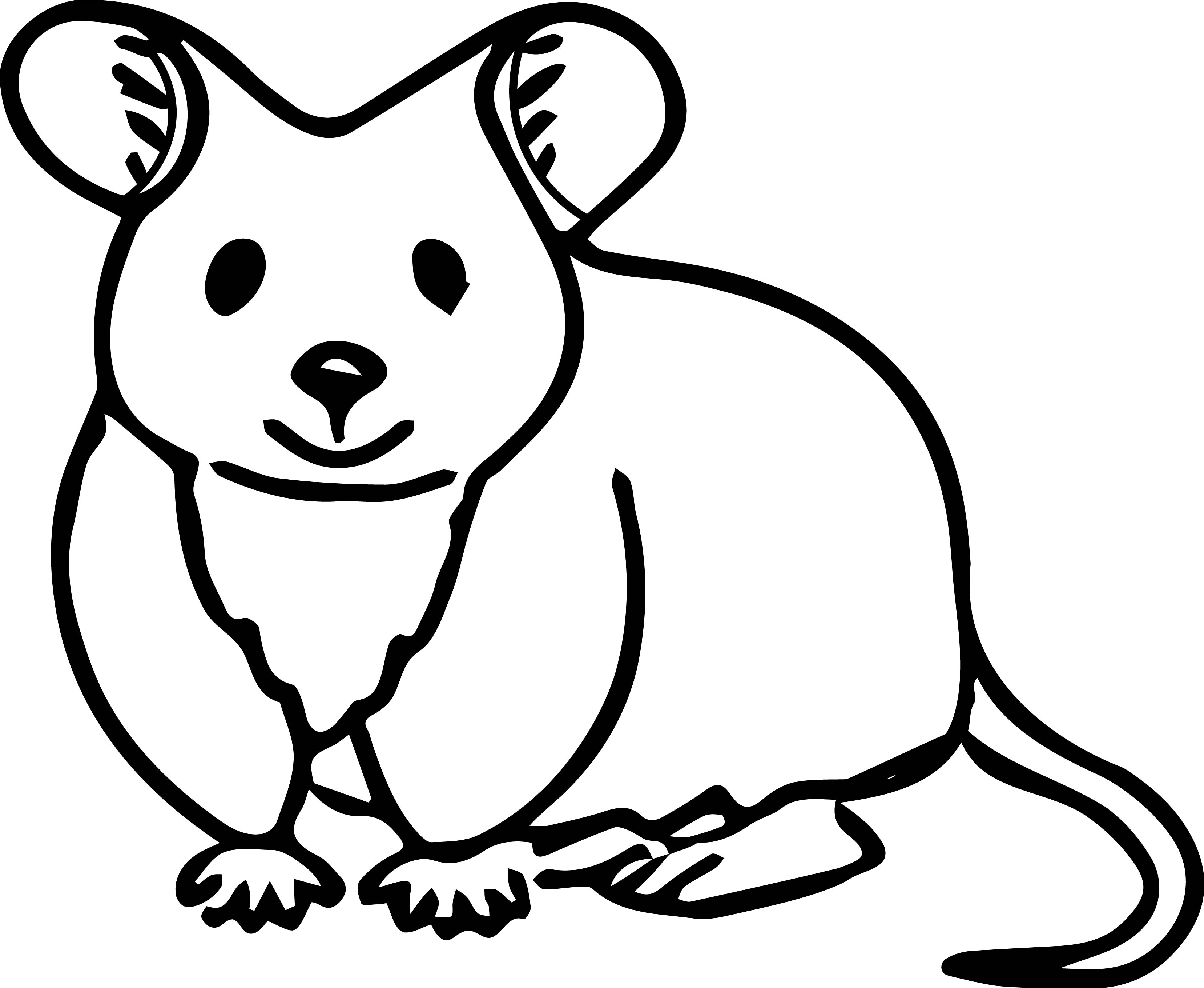 Mouse Jpeg Coloring Page 35