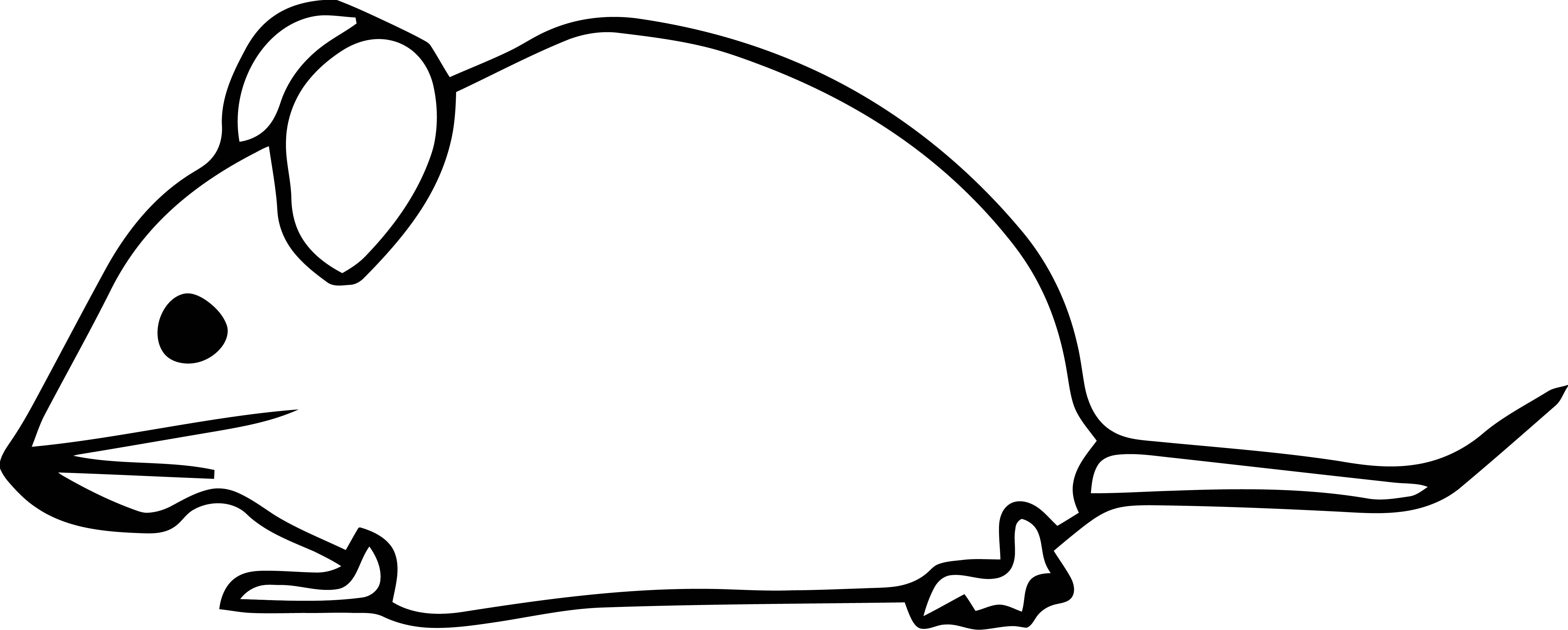 Mouse Jpeg Coloring Page 48