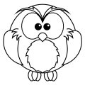 New Owl Coloring Page