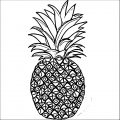 Pineapple Coloring Page WeColoringPage 24