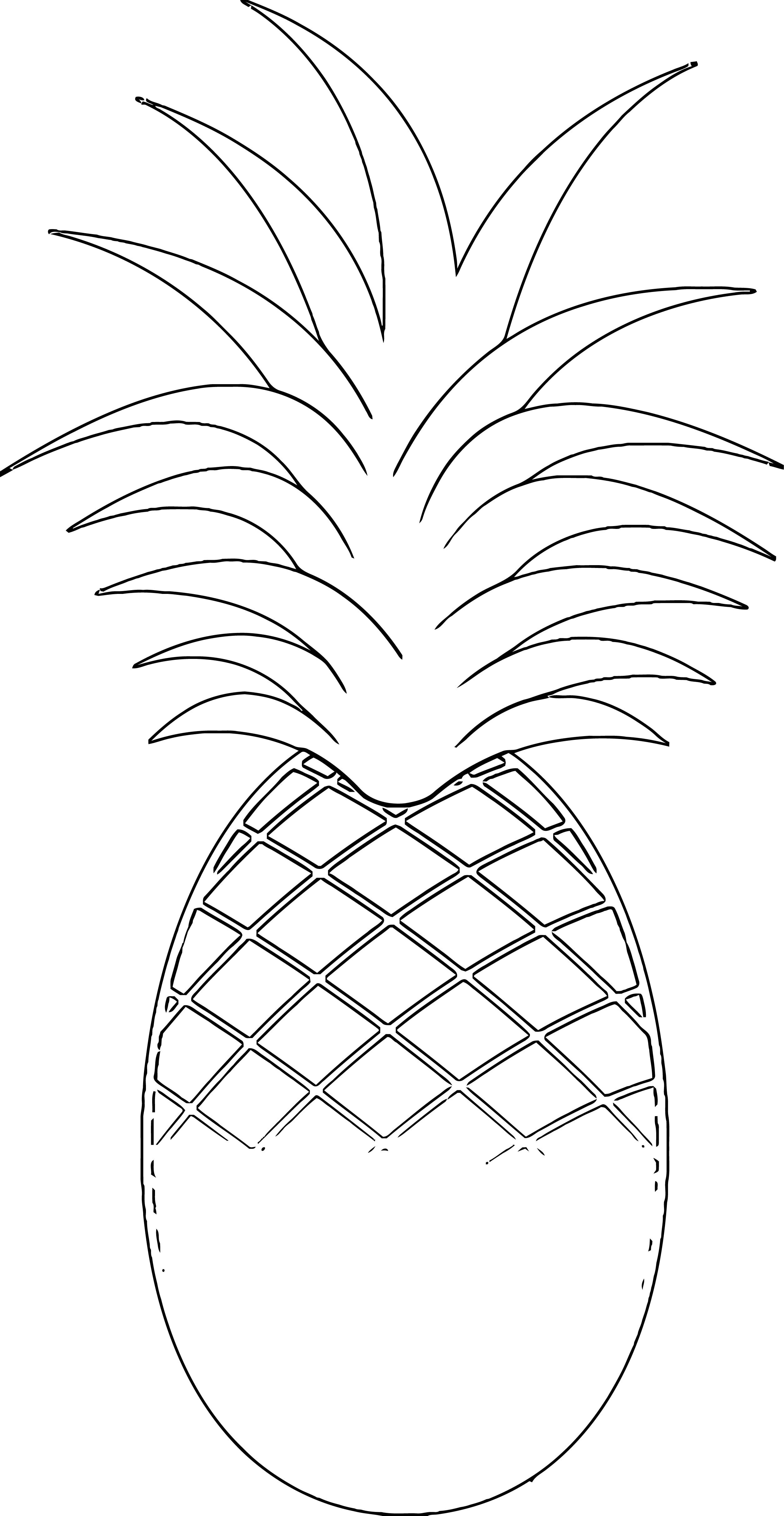 Pineapple Coloring Page WeColoringPage 40