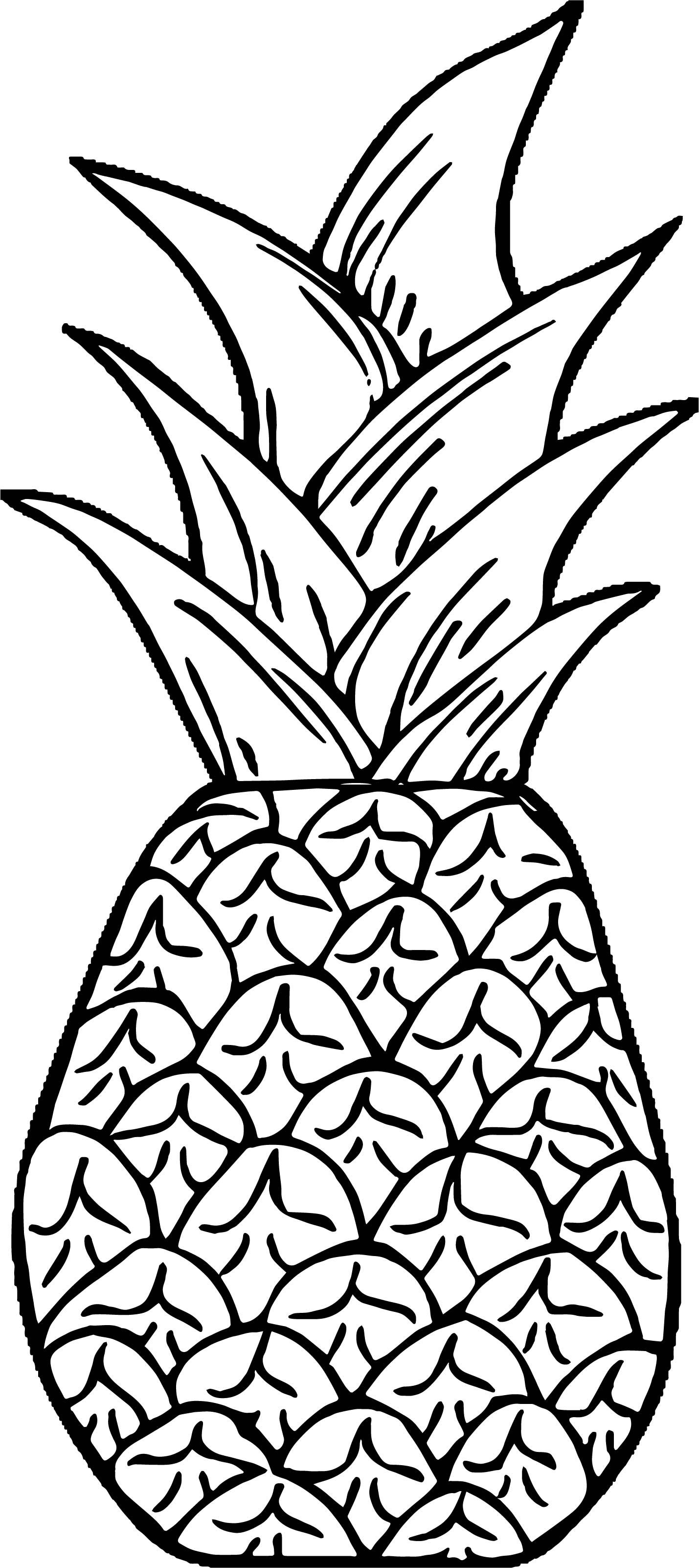 Pineapple Coloring Page WeColoringPage 43