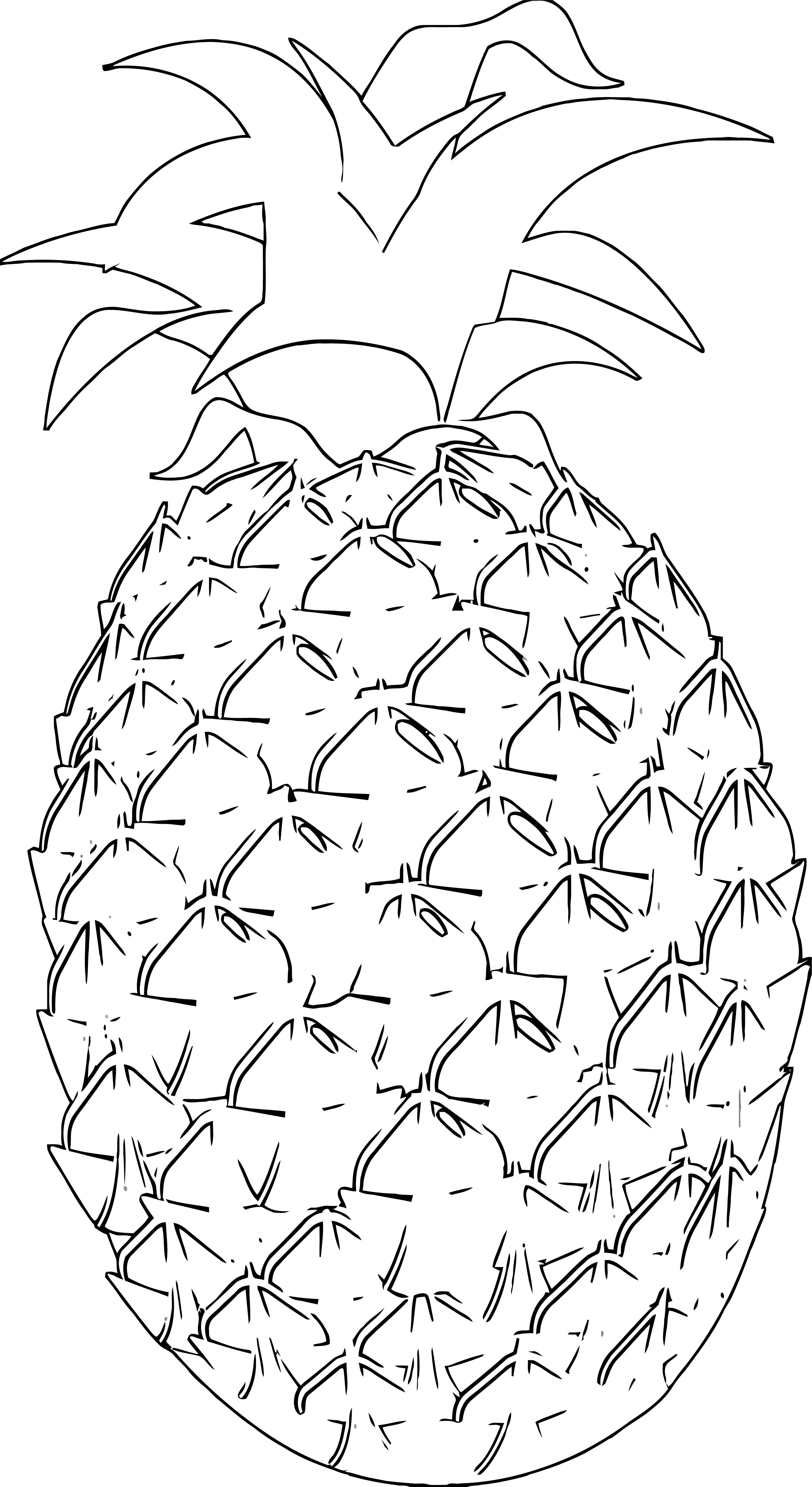Pineapple Coloring Page WeColoringPage 44
