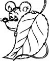 Mouse Coloring Page 61