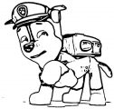 The New Pup Screenshot Paw Patrol Coloring Page