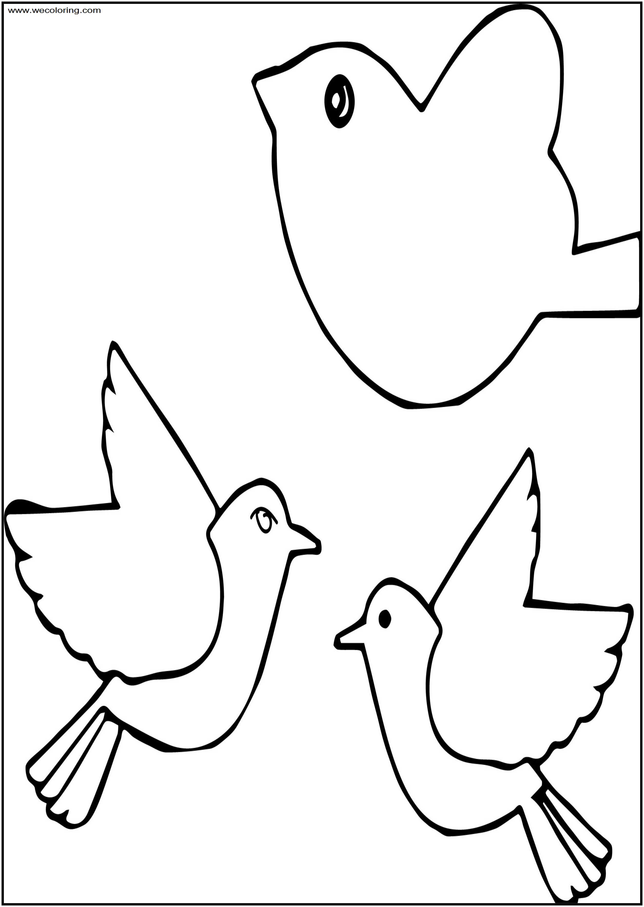 A Bird Free A4 Printable Coloring Page