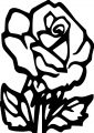 Arroyo Rose Coloring Page