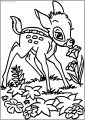 Bambi Smell Flower Free Printable Coloring Pages